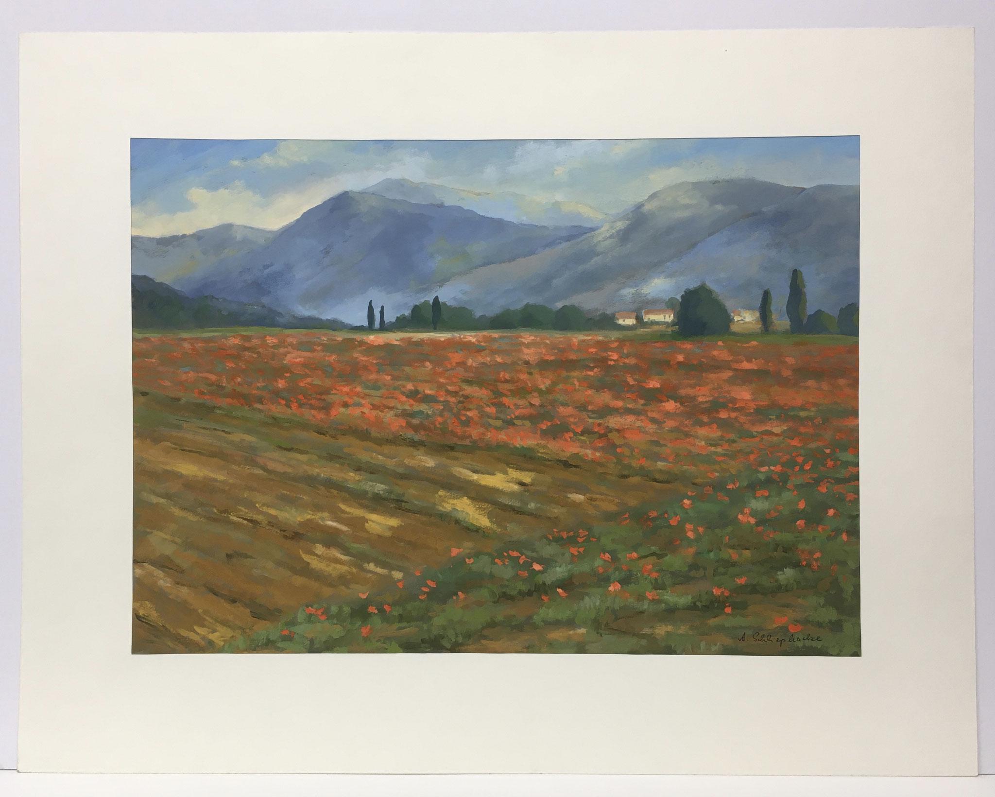 "Orig. Gouache auf Papier ""Mohnfeld in der Provence"" - 90 x 70 cm - 1.490,-€"