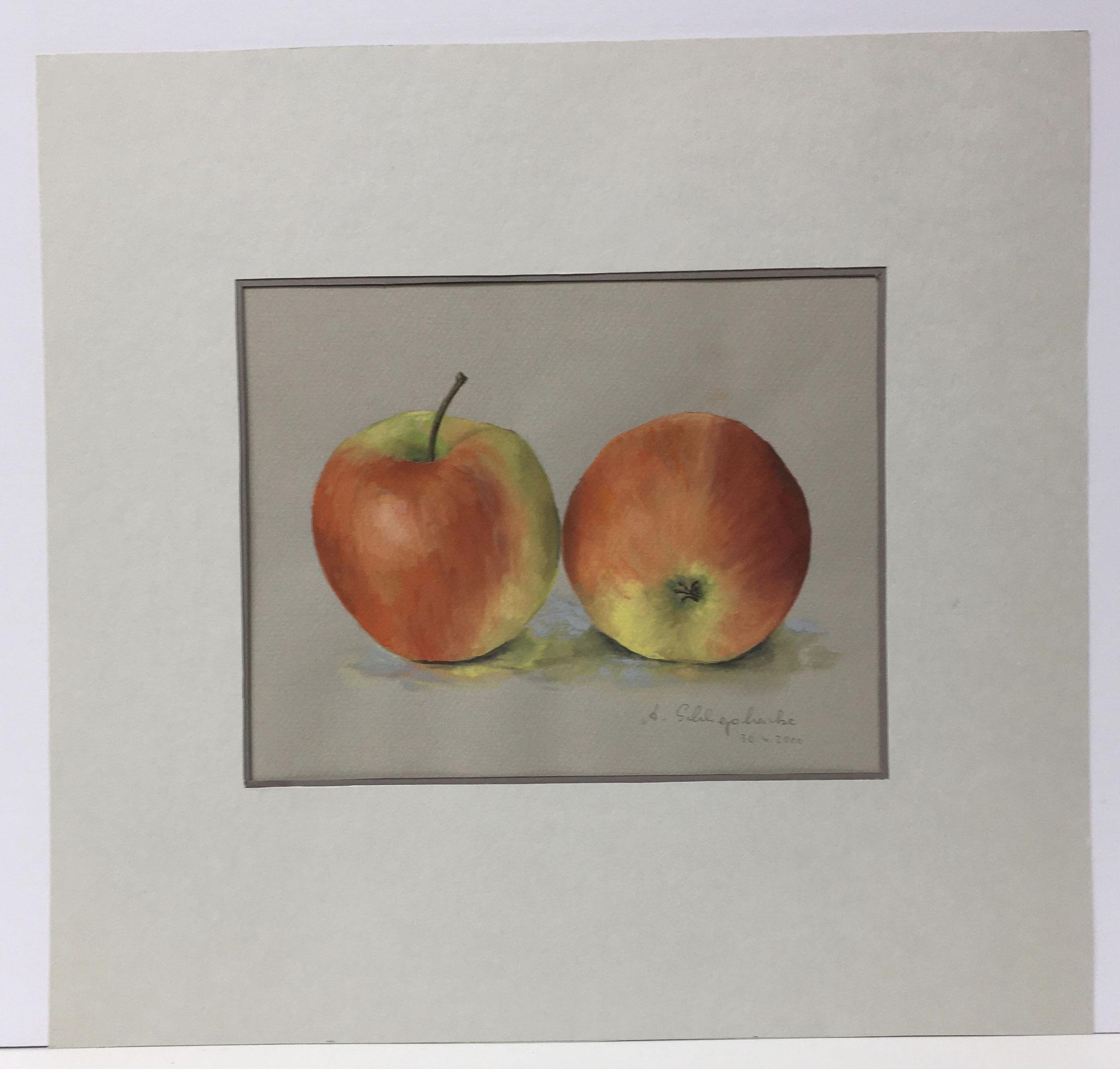 """Orig. Aquarell """"Stillleben Äpfel"""" - 36 x 36 cm - 310,- €"""