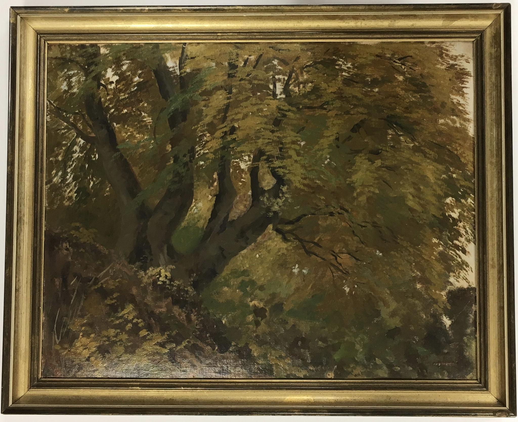 """Kornbeck, Original Ölbild """"Baum""""  Größe/Falzmaß: 50x40, € 1120,-"""