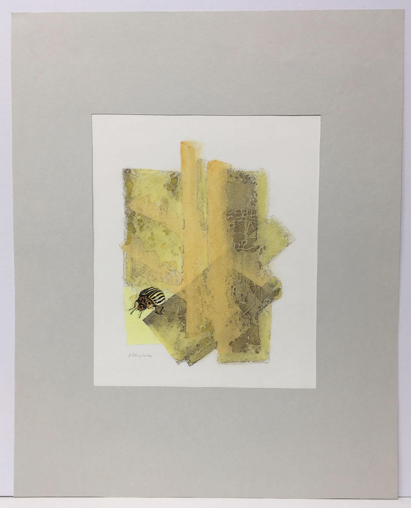 "Ölkreide mit Insekt ""Kartoffelkäfer"" - 40 x 50 cm - 590,- €"