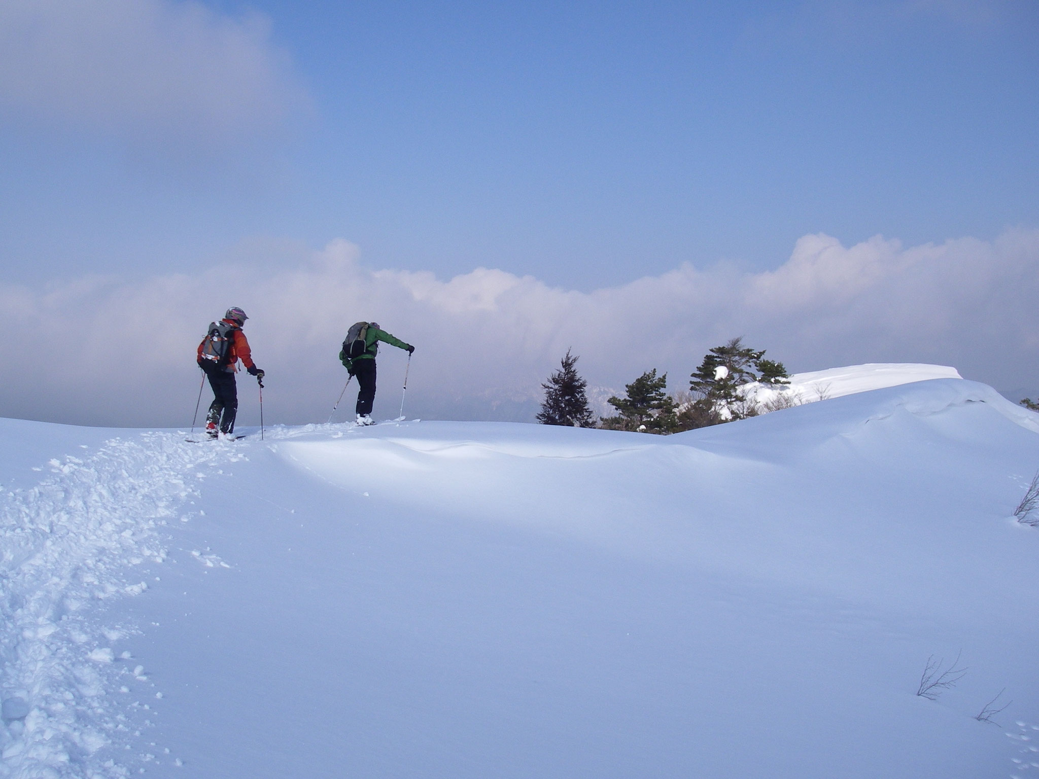 鉢高原  霧ヶ峰