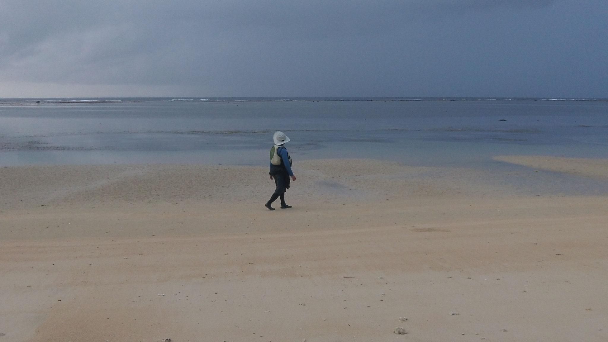 西表島  南風見田浜