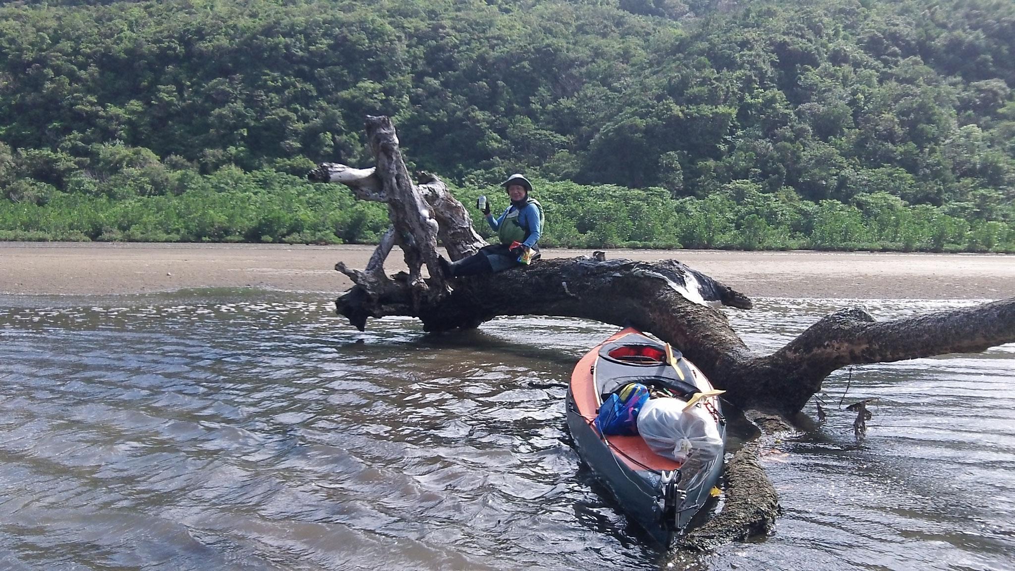 西表島  仲良川