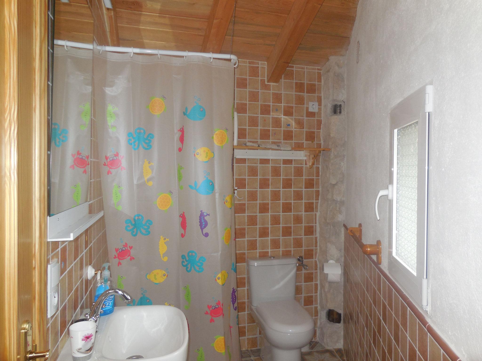 Segundo baño planta baja