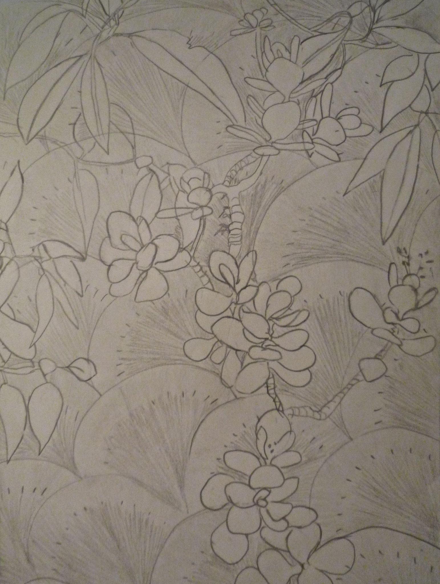 Croquis de plante chez Maud