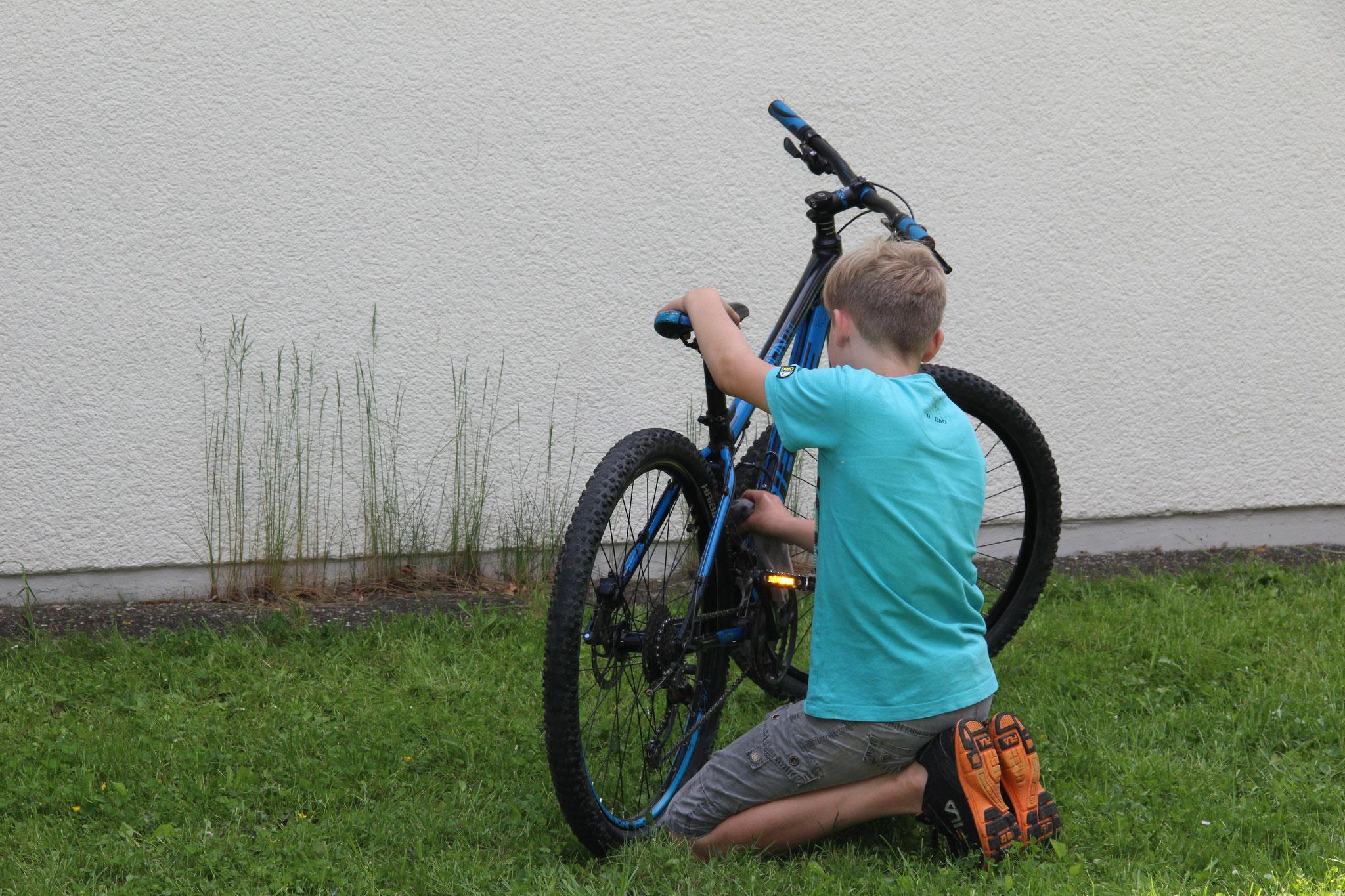 Fahrradreinigung
