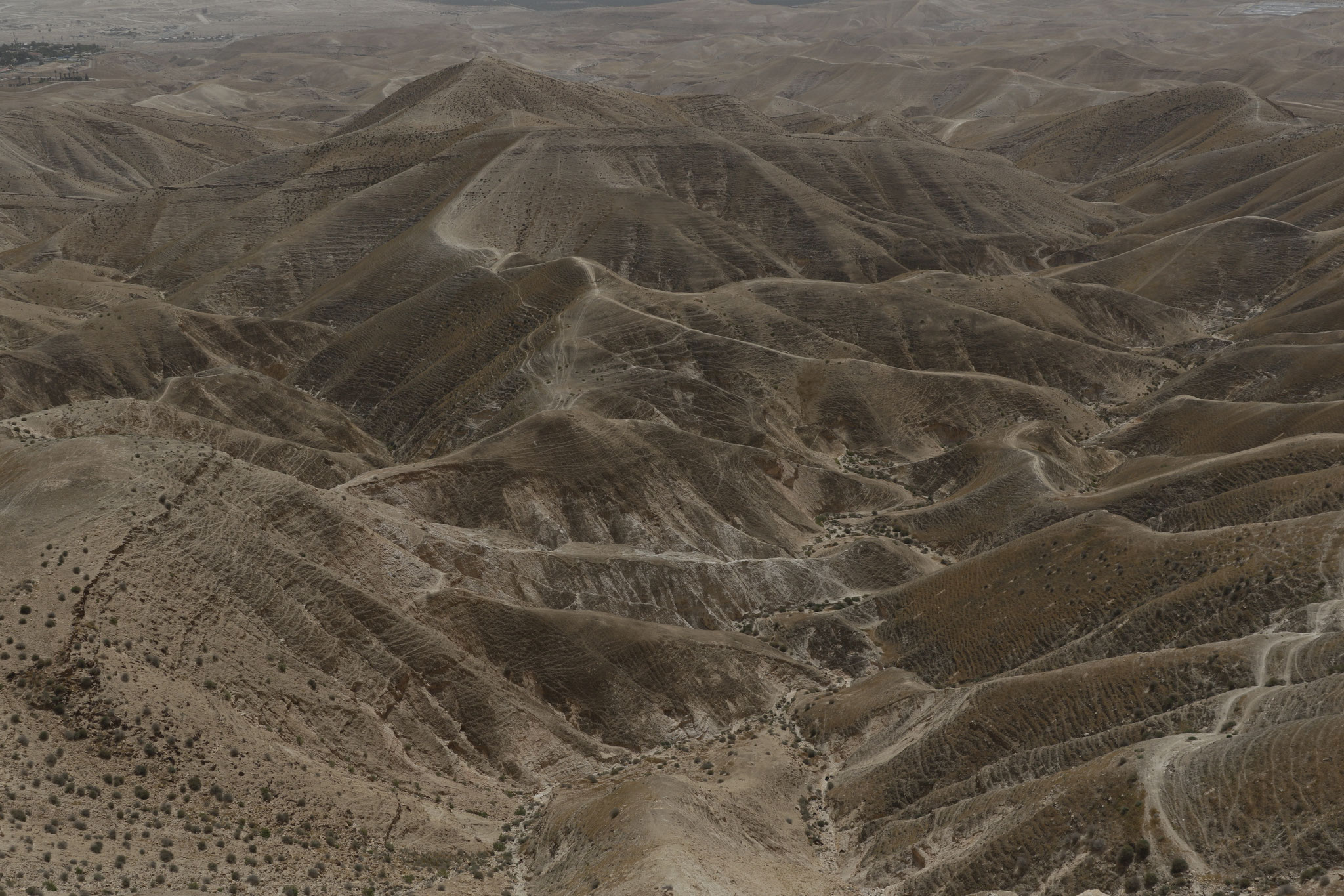 Judäaische Wüste