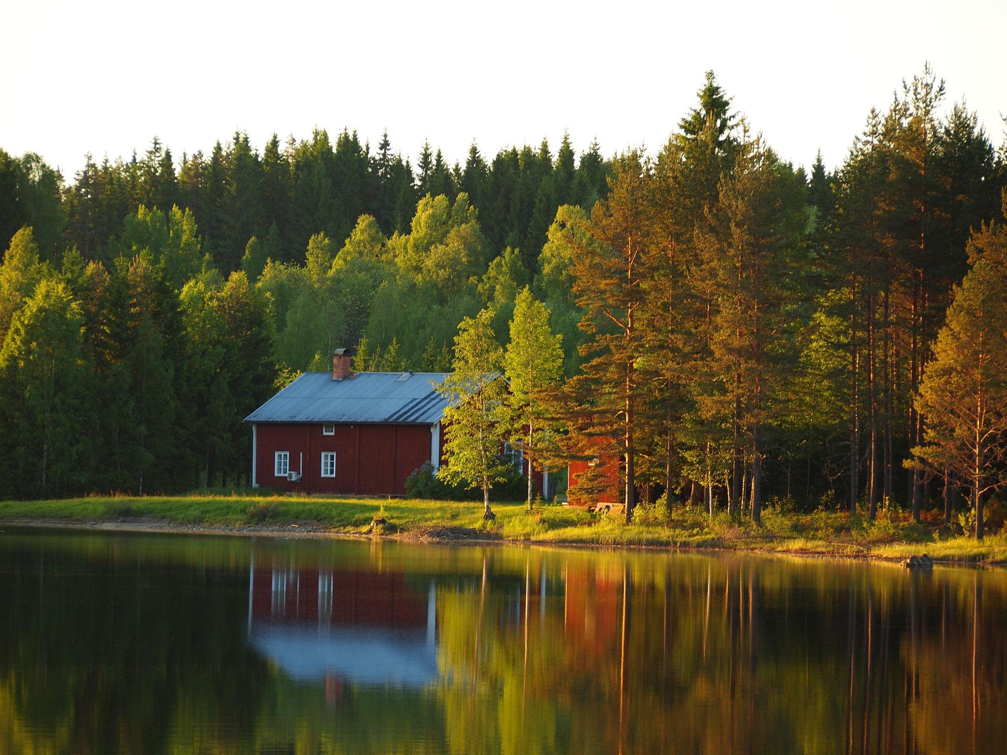Nya Skogsgården - Kitsch in Reinform