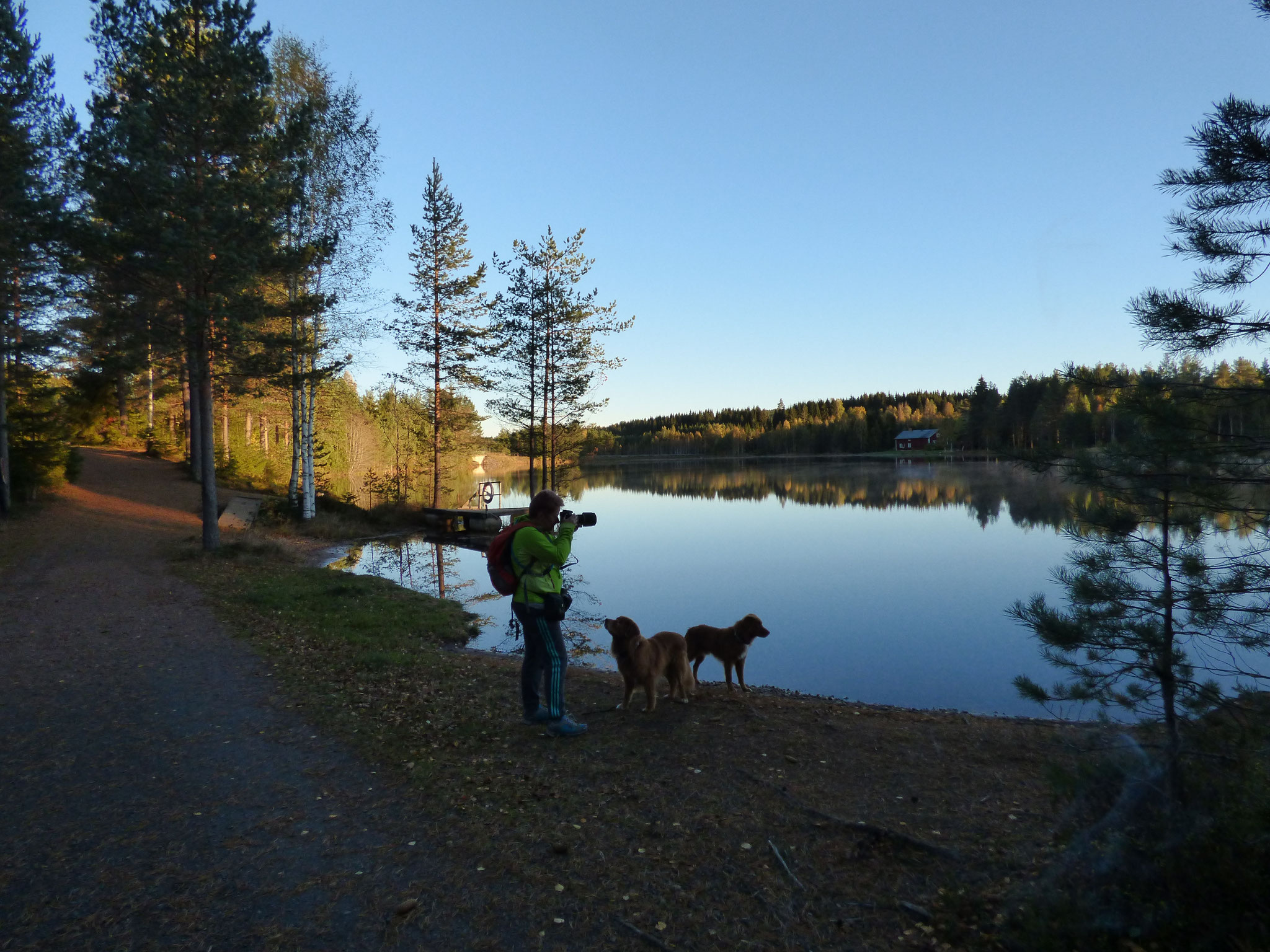 Camping Nya Skogsgården
