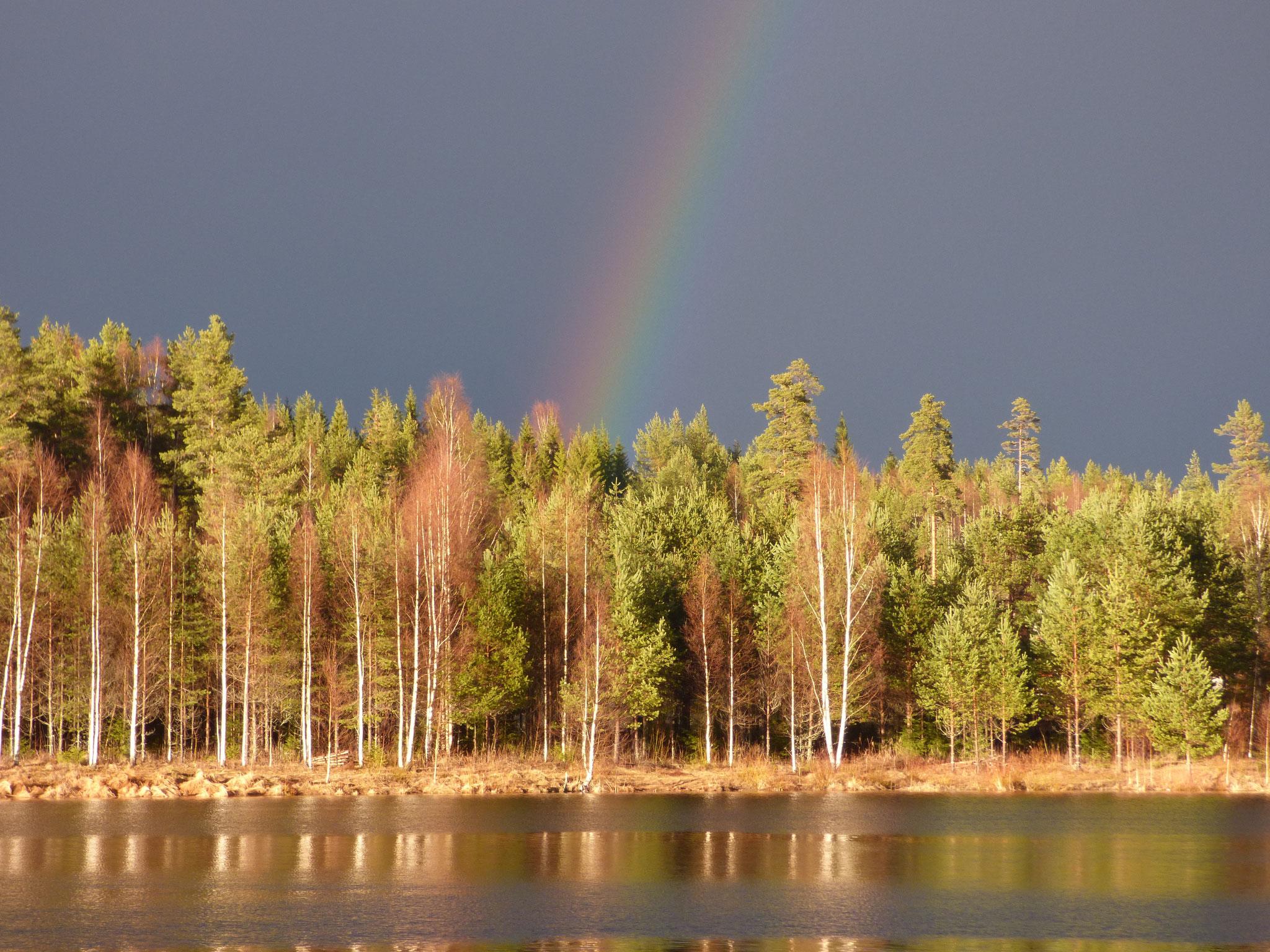 Nya Skogsgården