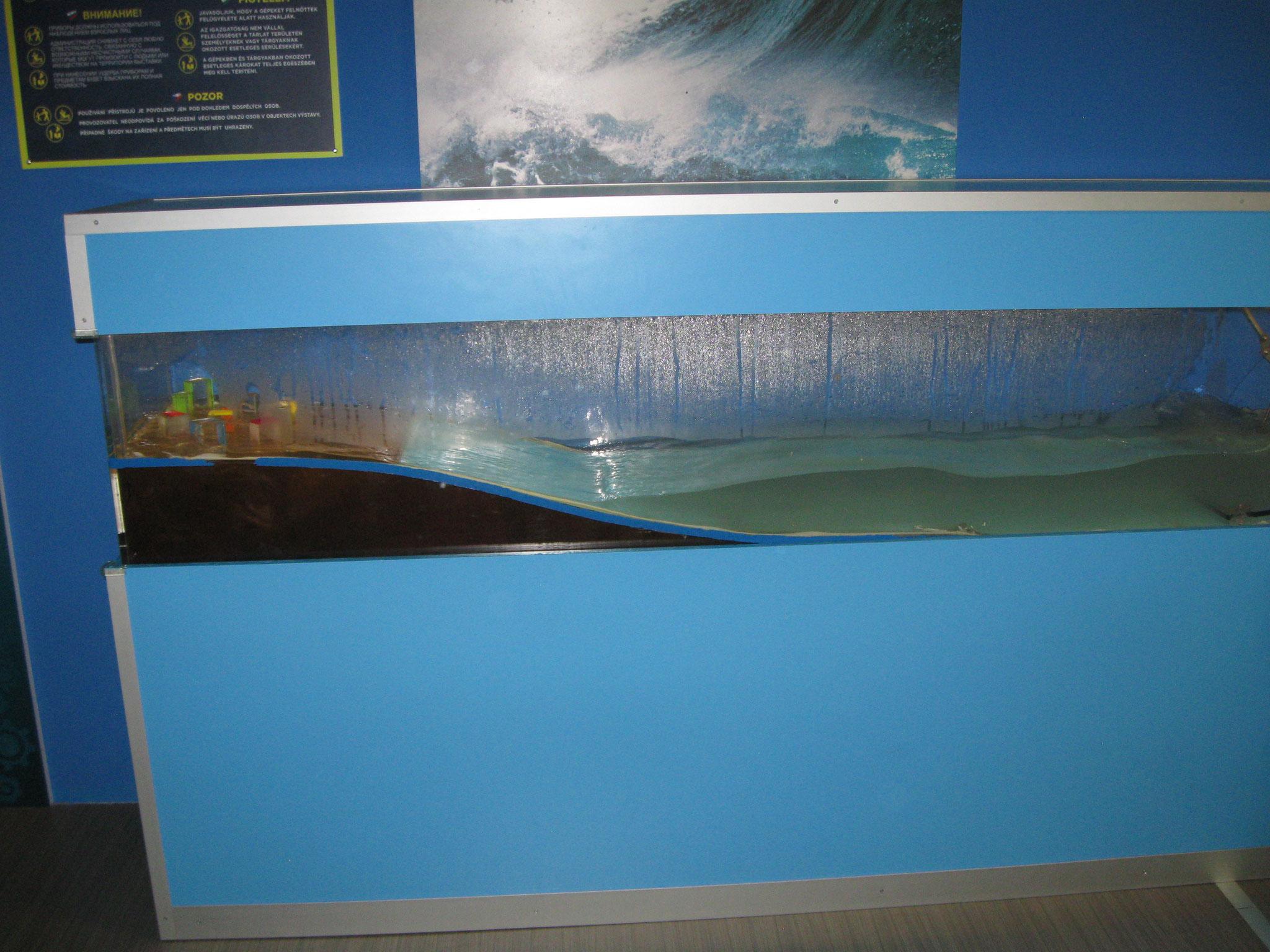 Tsunami: onde spaventose!