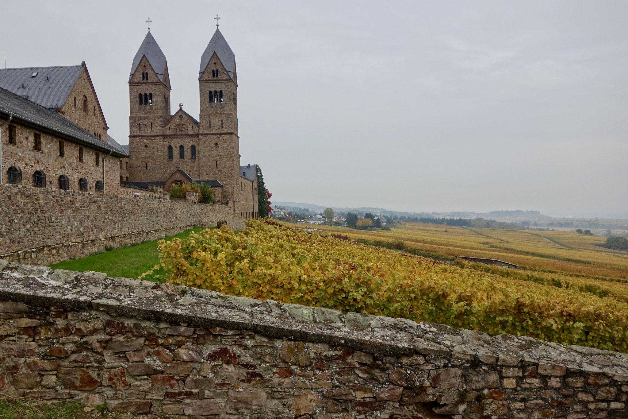 Abbey Eibingen and its vineyards
