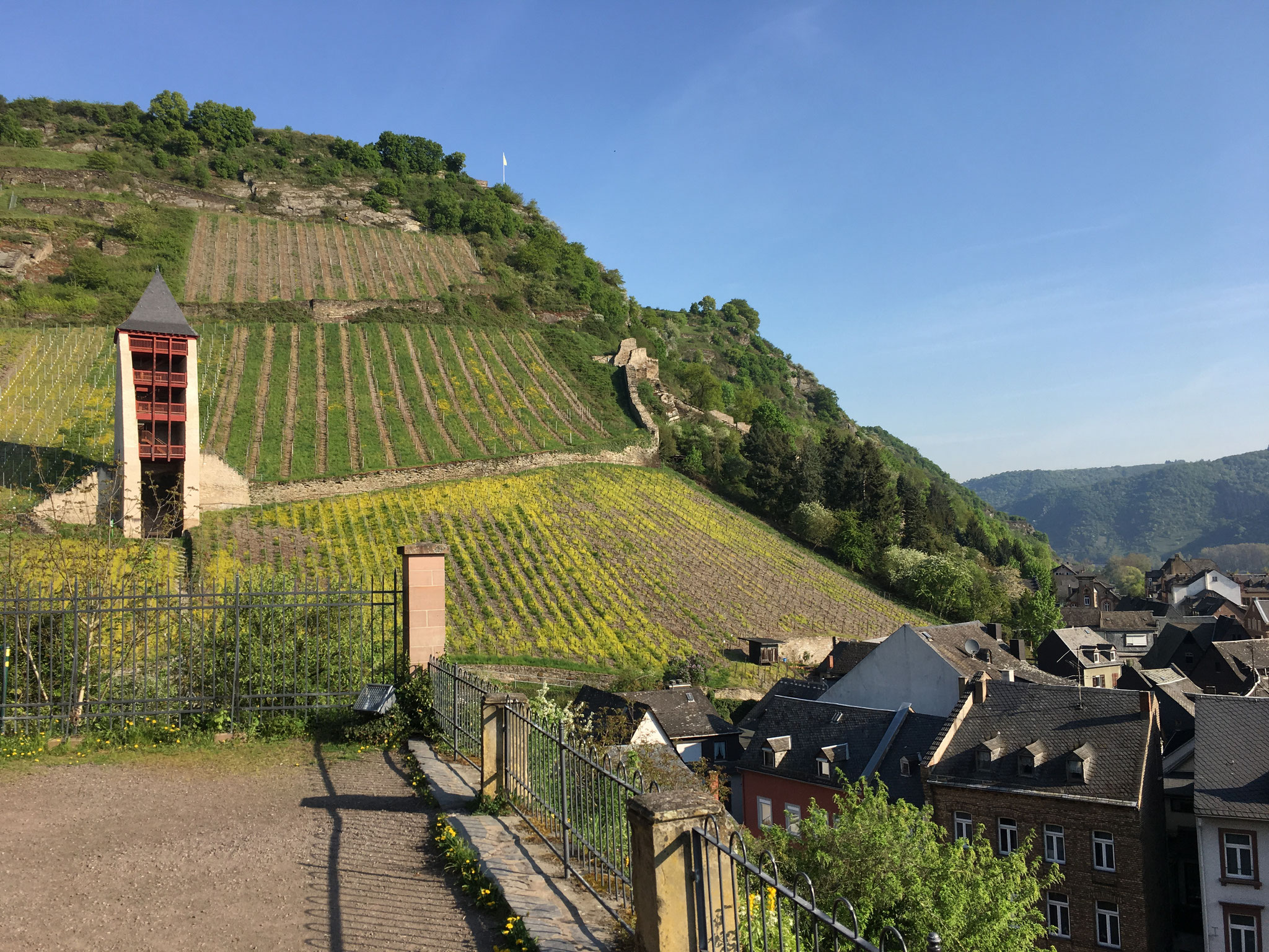 Famous vineyard sites in Bacharach