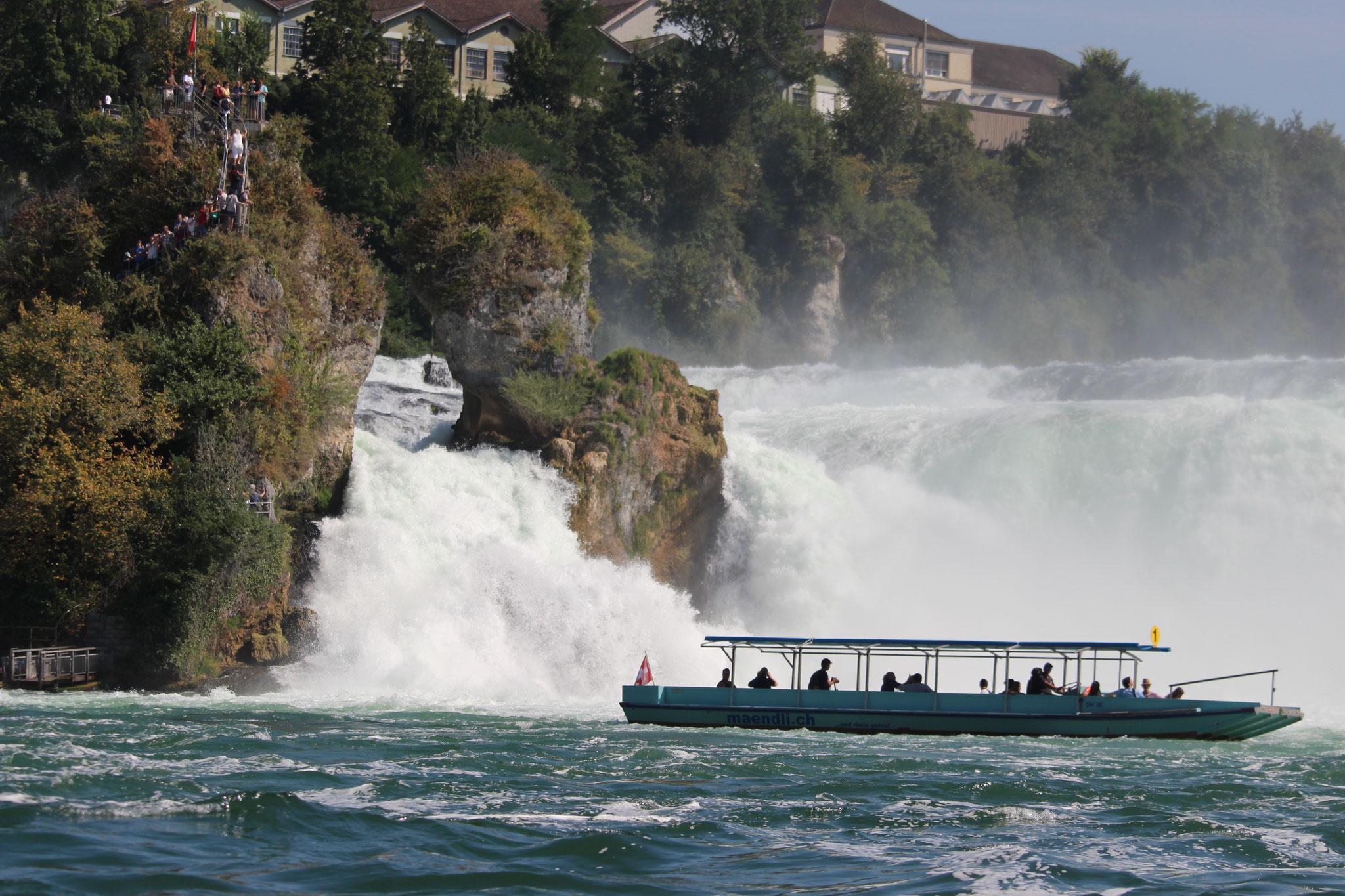 Rheinfall in Schaffhausen in der Schweiz