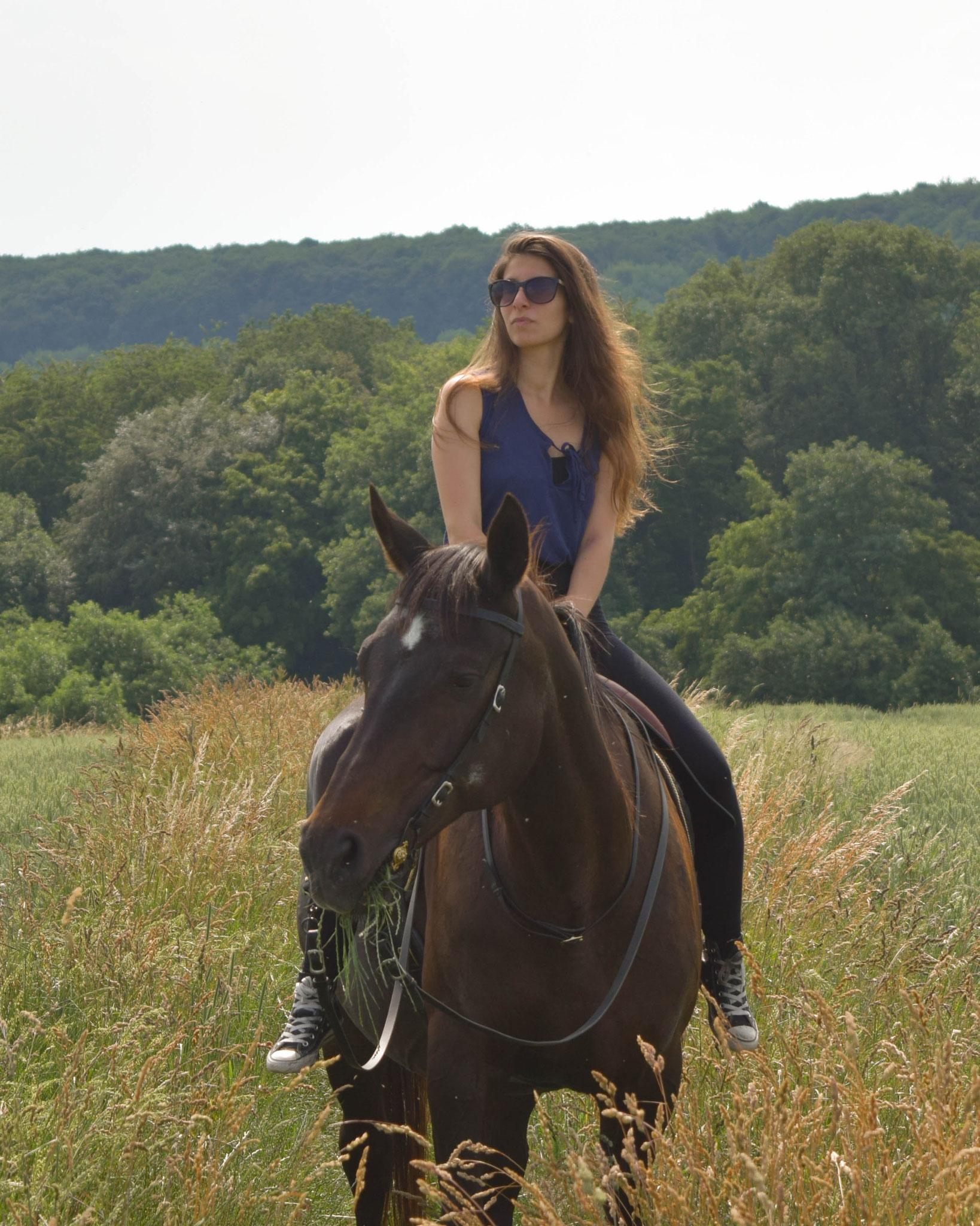 Horse & Summer, Carmen Schubert