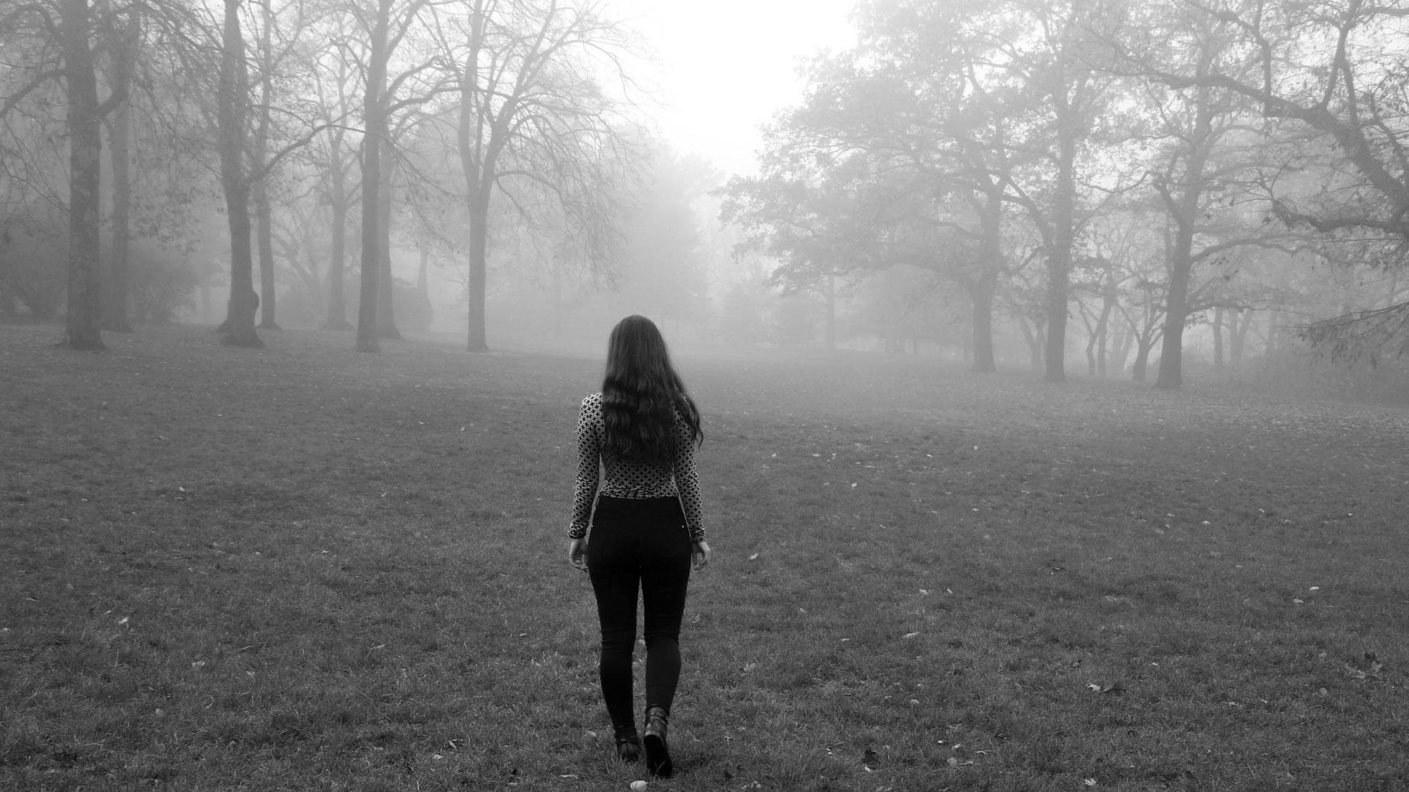 by Carmen Schubert Herbst Fall Fog Nebel Autumn