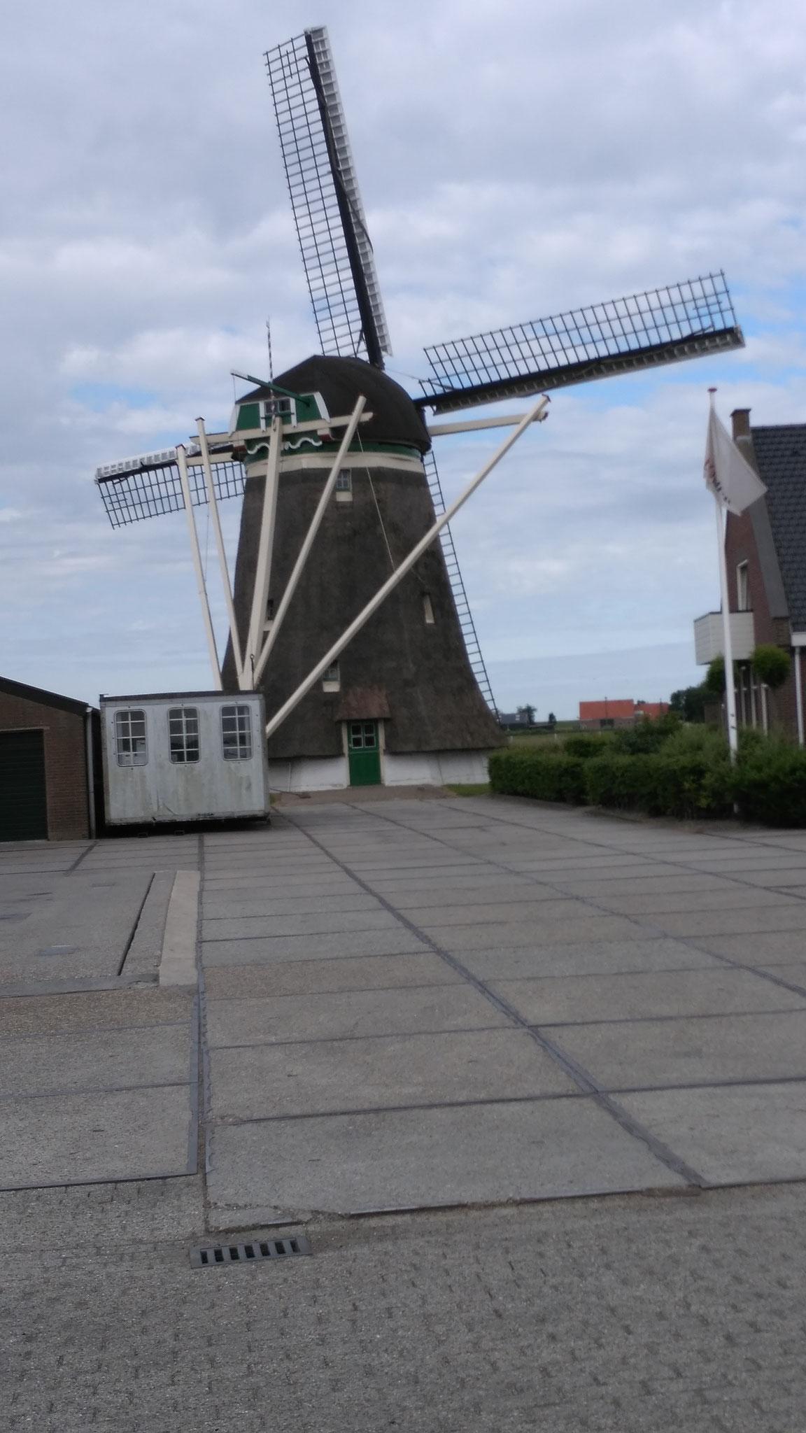 Windmühle auf dem Weg nach Renesse