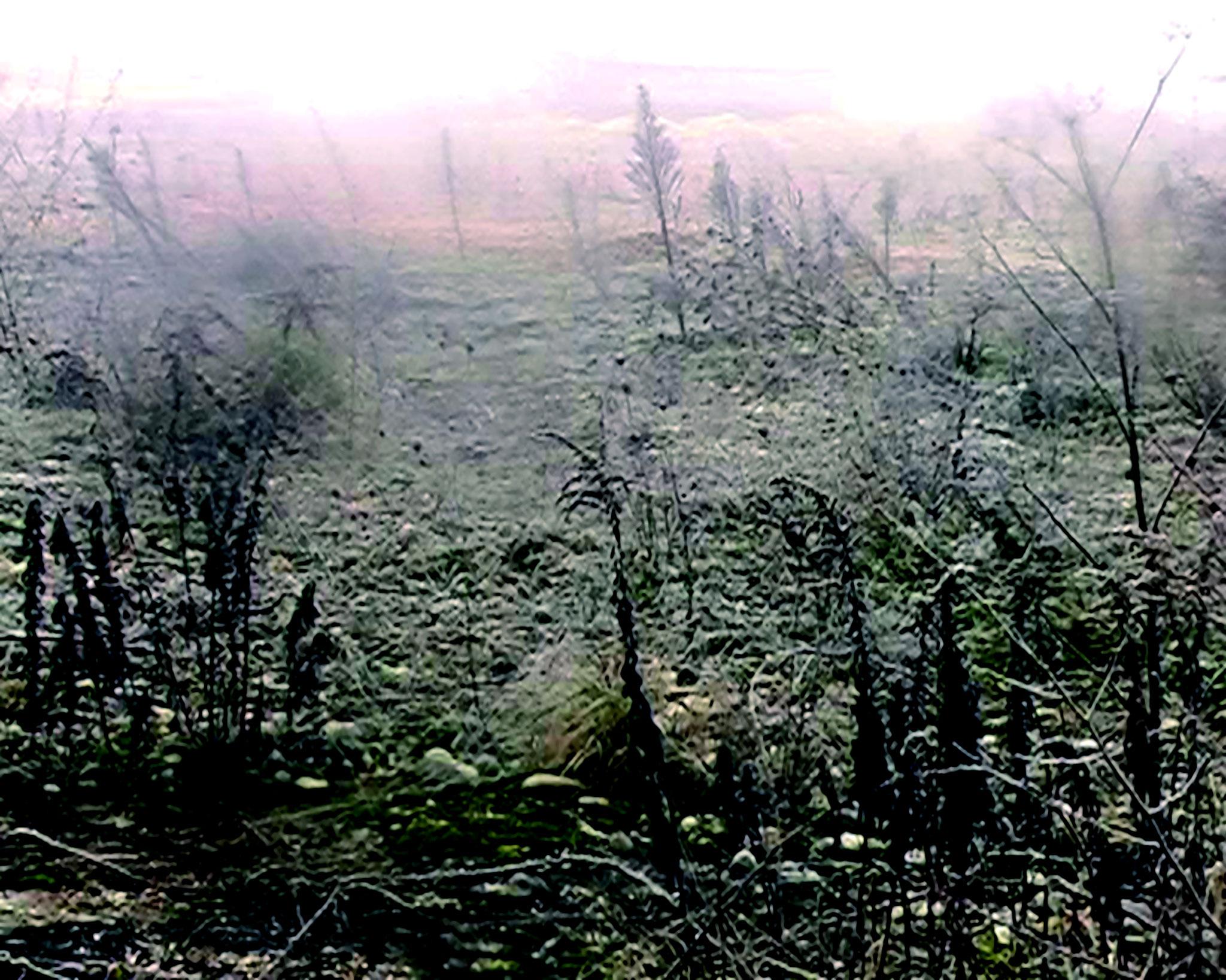 Südwest; 2011; Videostill; 60 x 80 cm