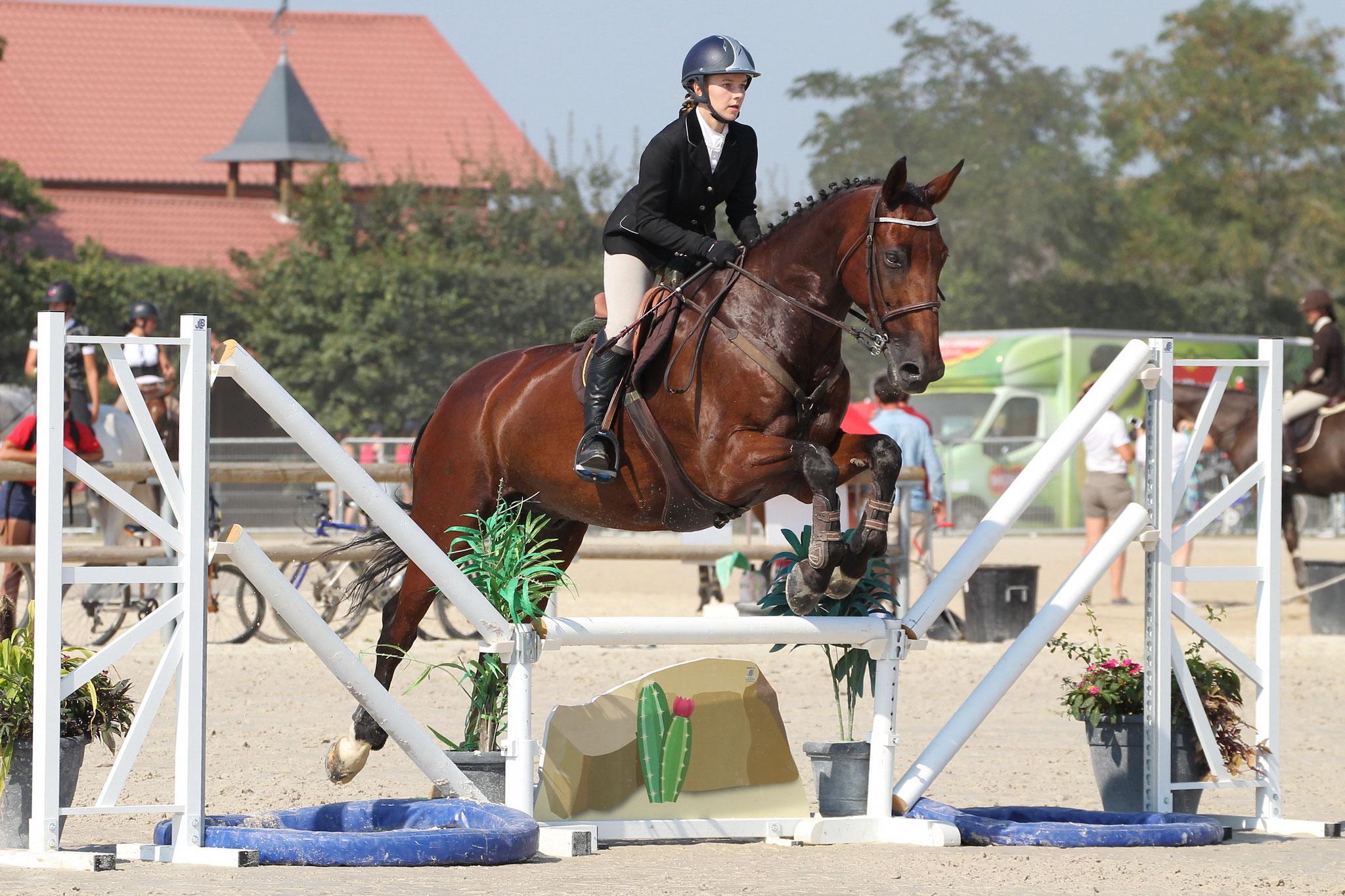 Découvrez les sports équestres dans l'un de nos clubs labellisés École Française d'Équitation