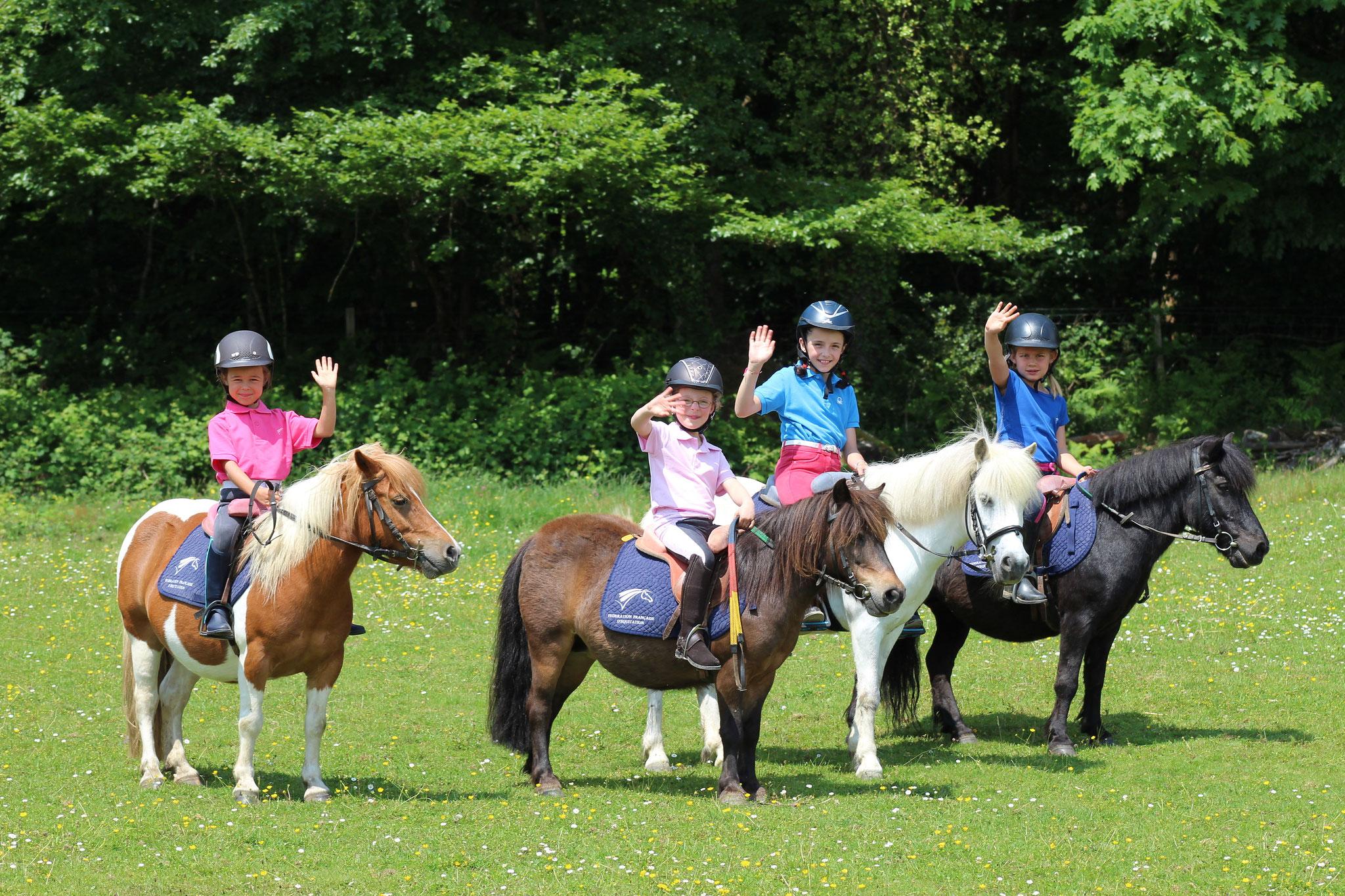 Stages d'été d'équitation en région Centre-Val de Loire