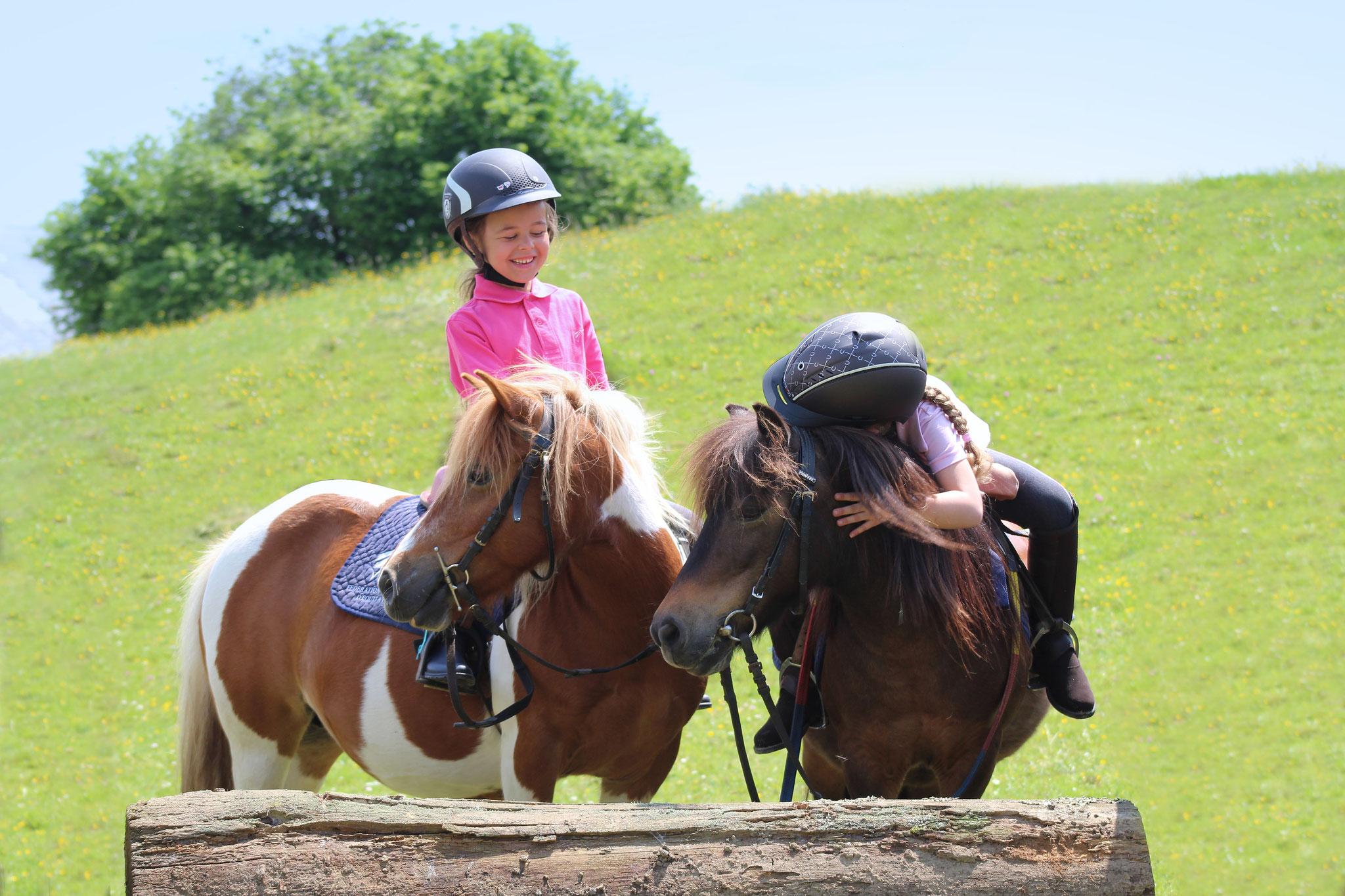 Découverte de l'équitation