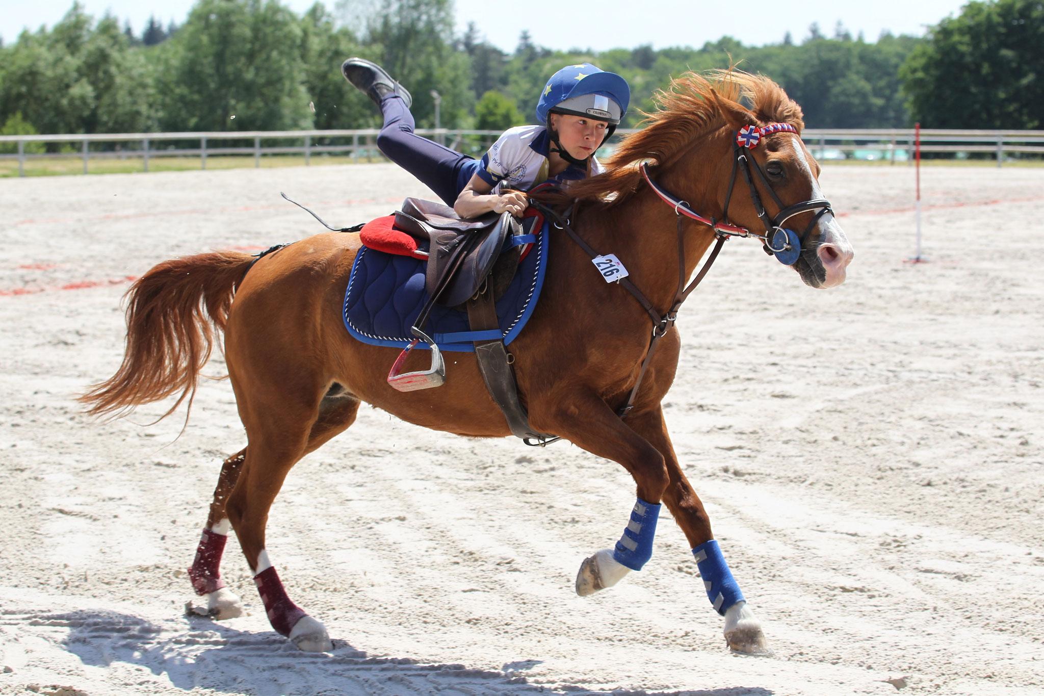 A cheval, de multiples activités sont possibles