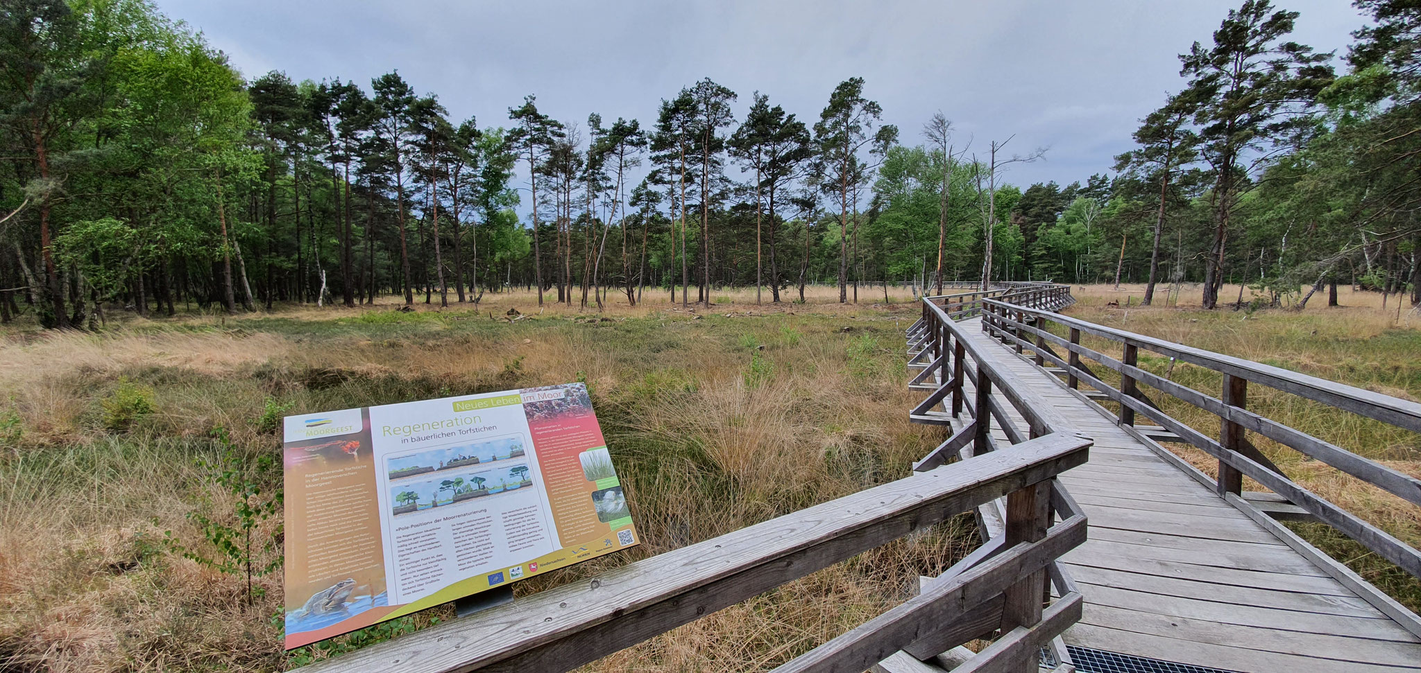 Infotafel auf dem Moor-Erlebnispfad,Foto:NABU/L.Reinberger