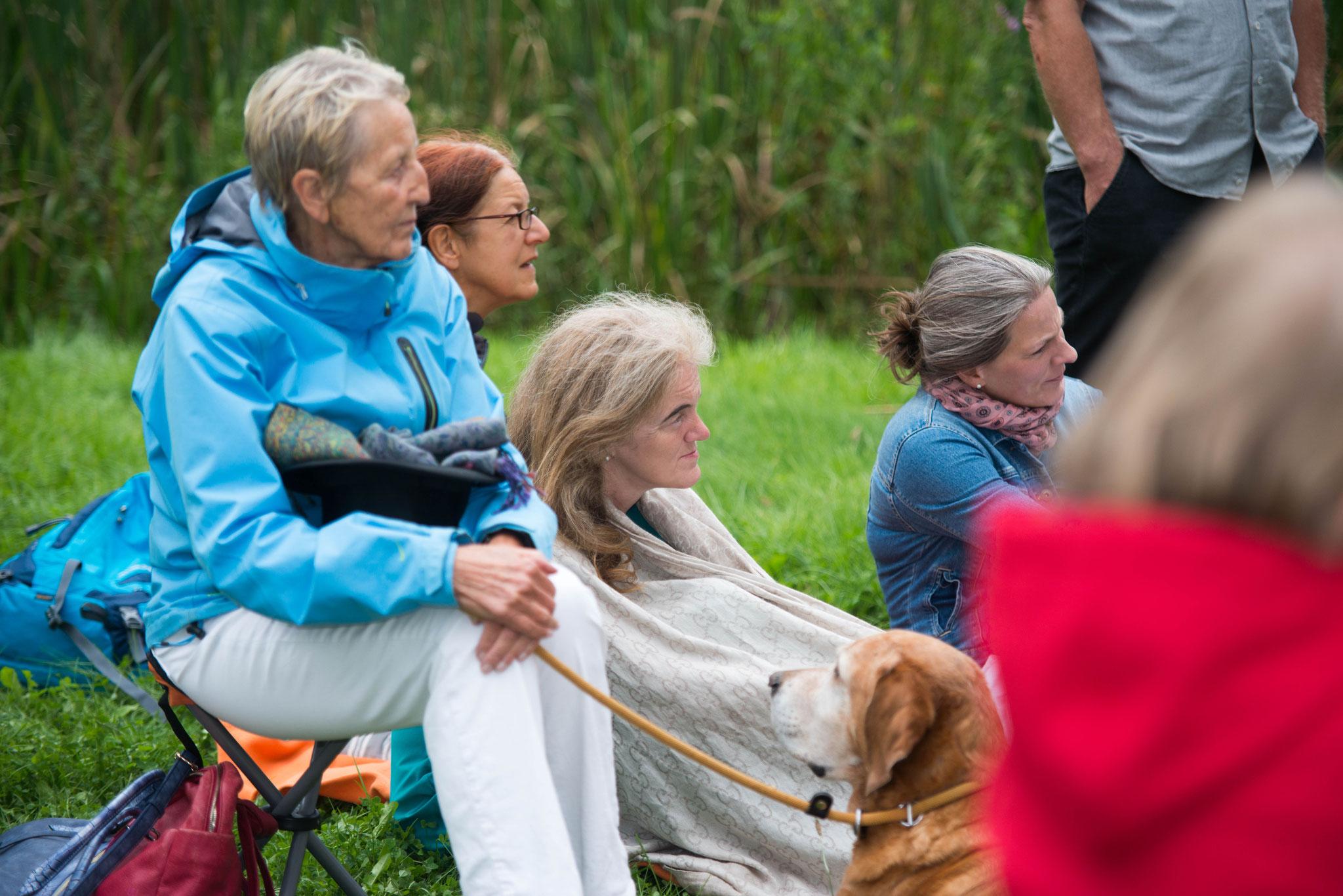 """20. August 2017, Abendsalon open air """"Harfe küßt Märchen"""" - Gäste auf der Liebensinsel im Putbusser Park, Putbus Rügen"""