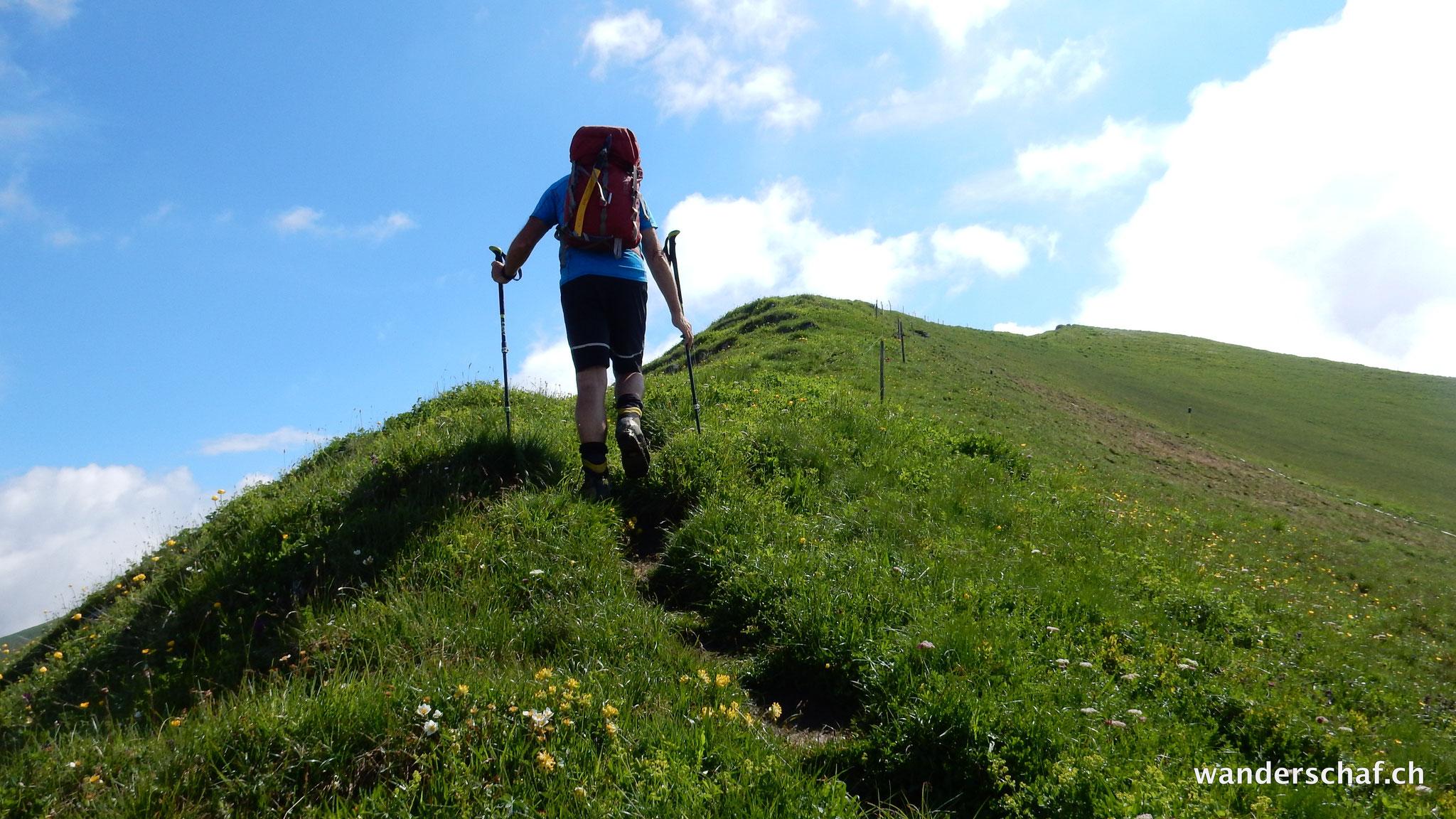 Aufstieg zum Sassauna Gipfel