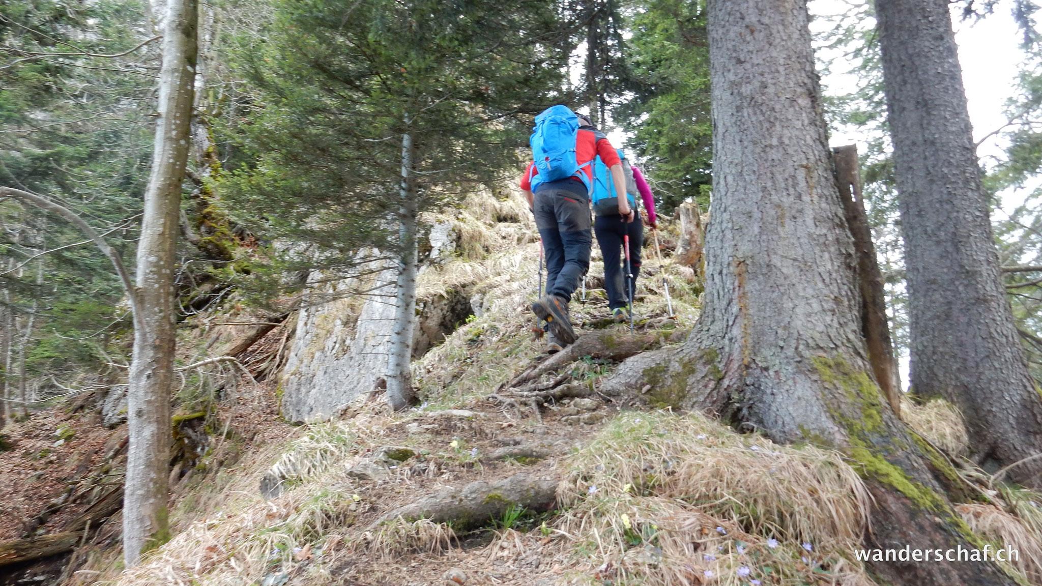 Aufstieg von Fälmisegg Richtung Vitznauerstock