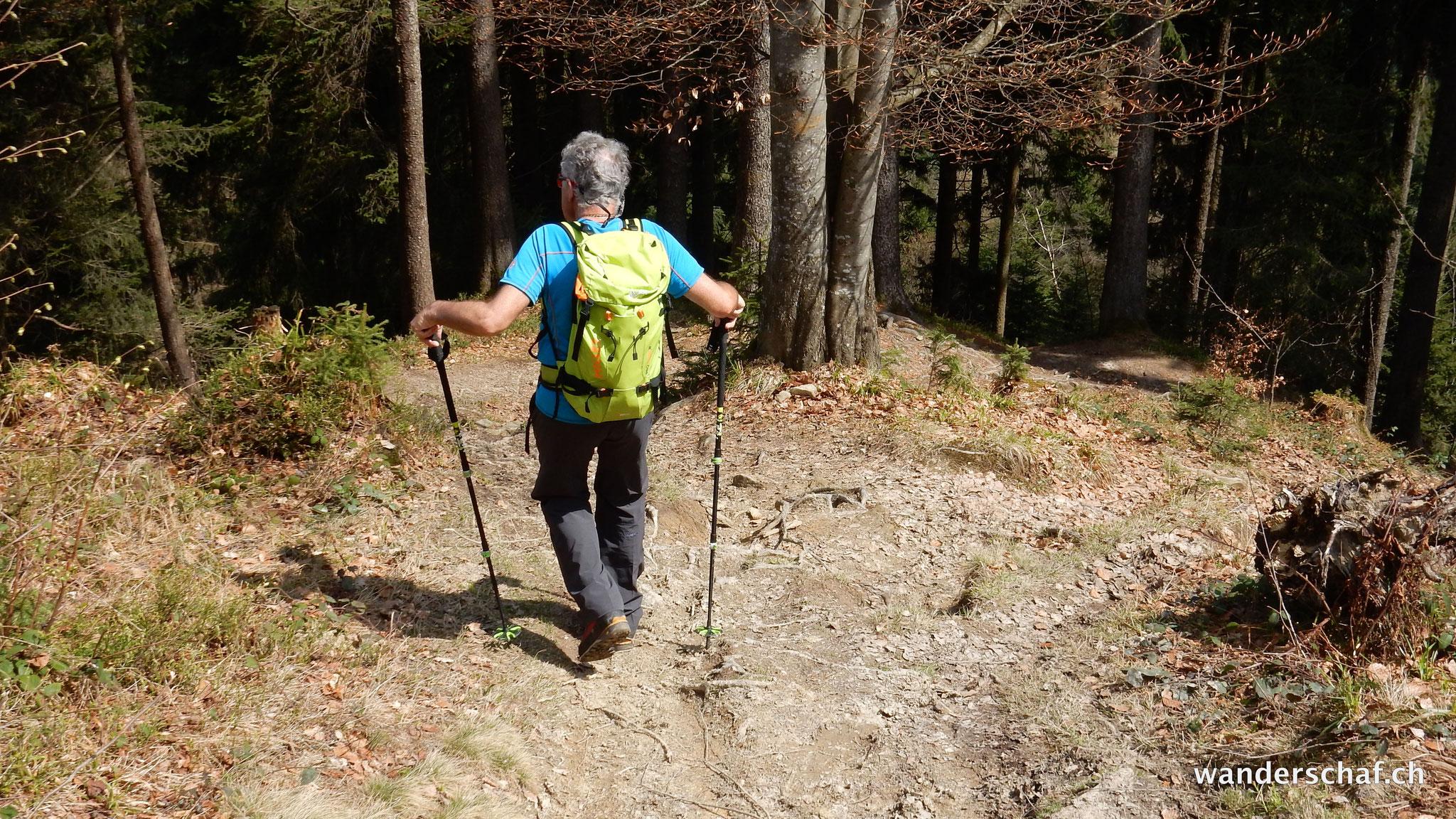 Abstieg vom Wildspitz