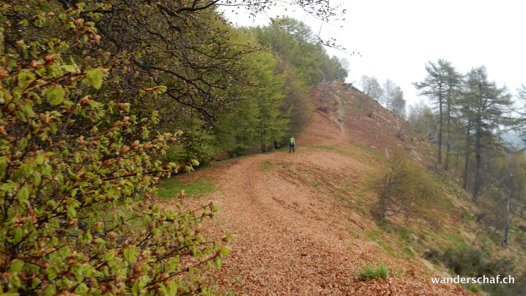 schöner Weiterweg dem Grat entlang Richtung Pizzo Pernice