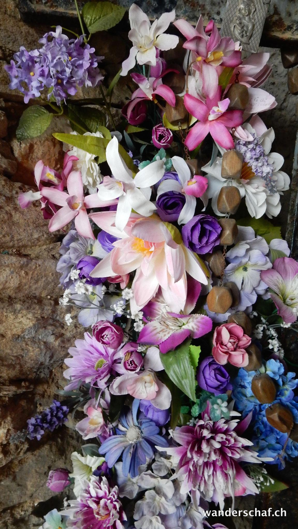 Blumenpracht bei der Cappella Fina