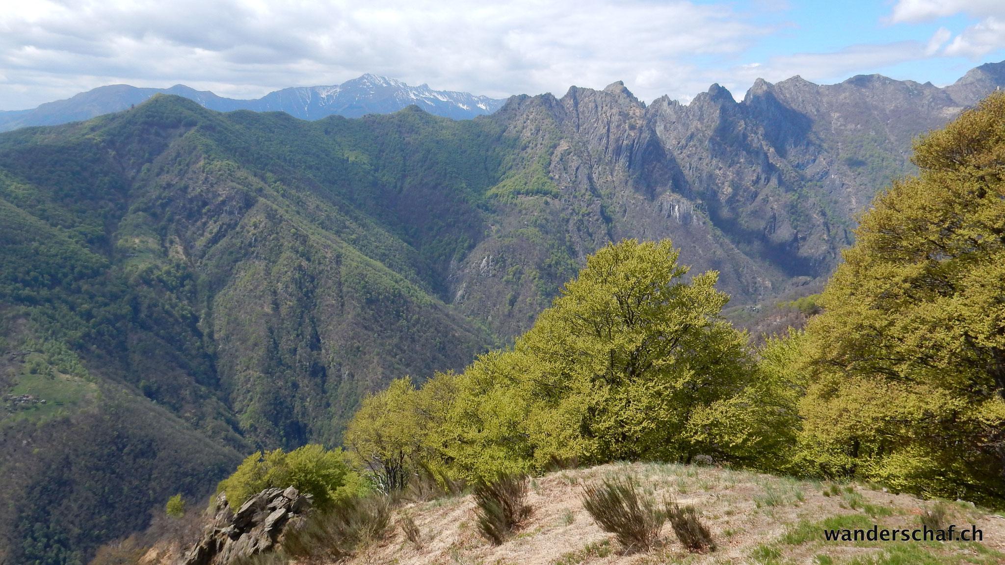 Aussicht von der Alpe Pra Richtung Cima Corte Lorenzo