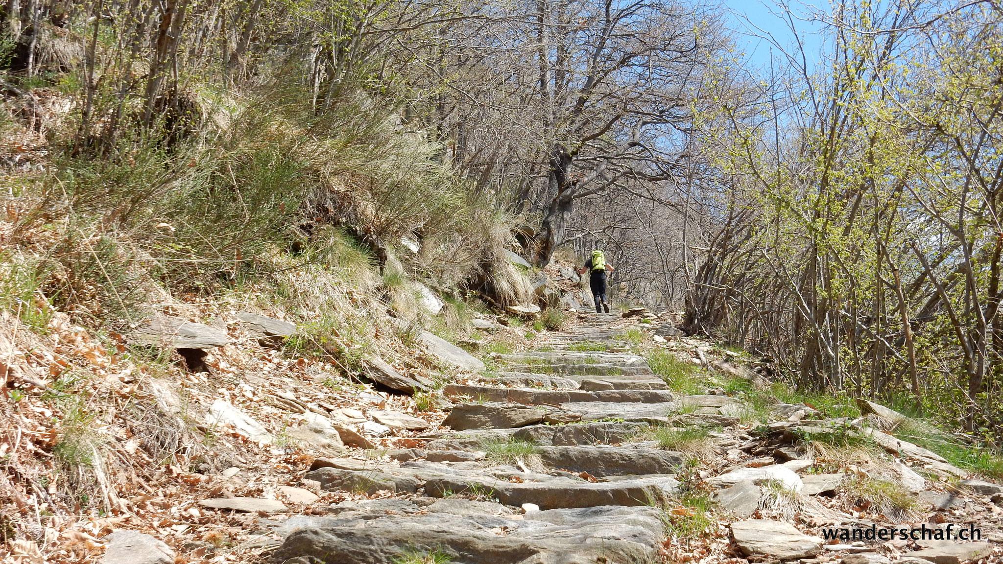 Aufstieg über die Mulateria zur Alpe Pra