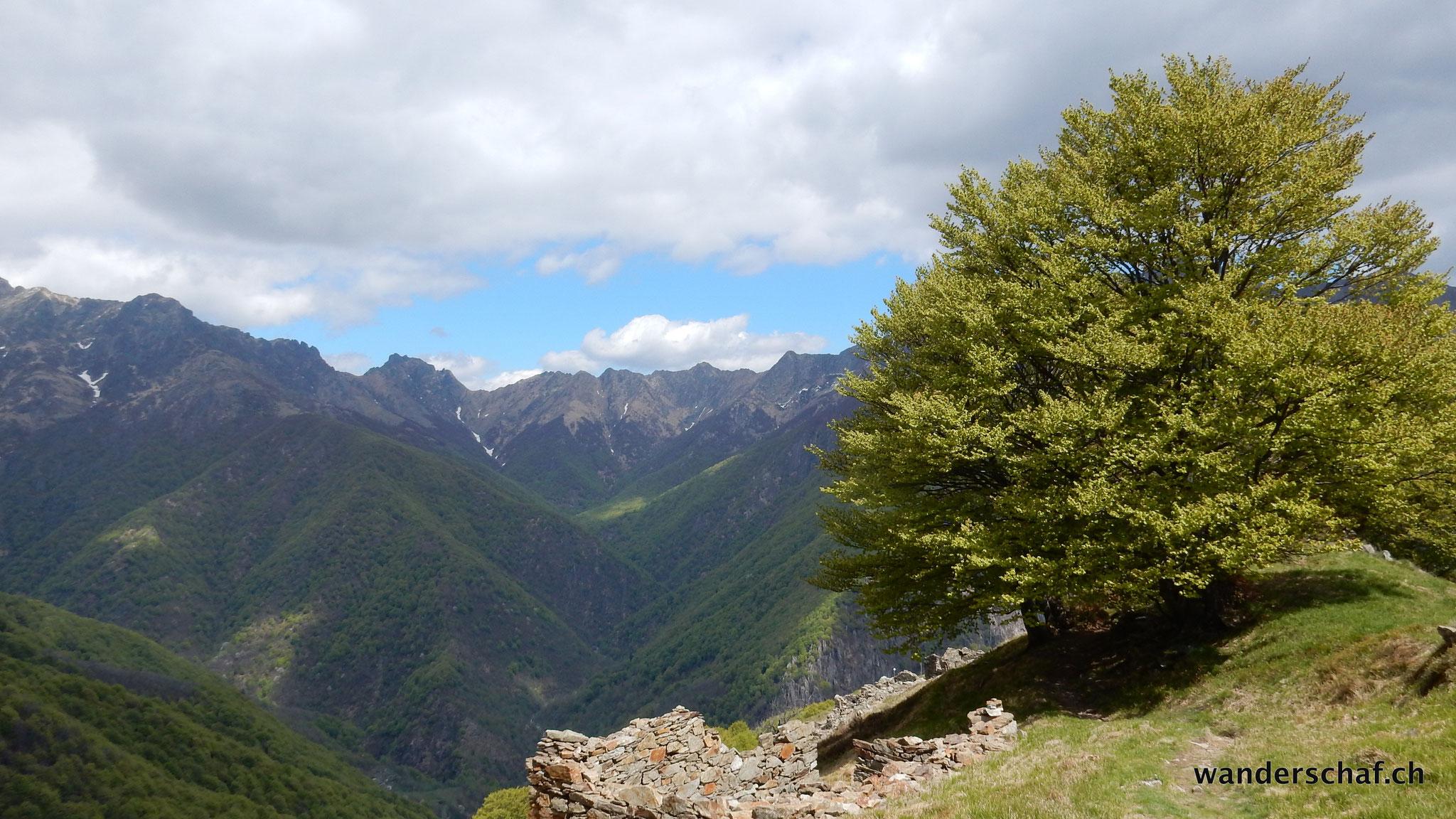 Blick Richtung Pogallo