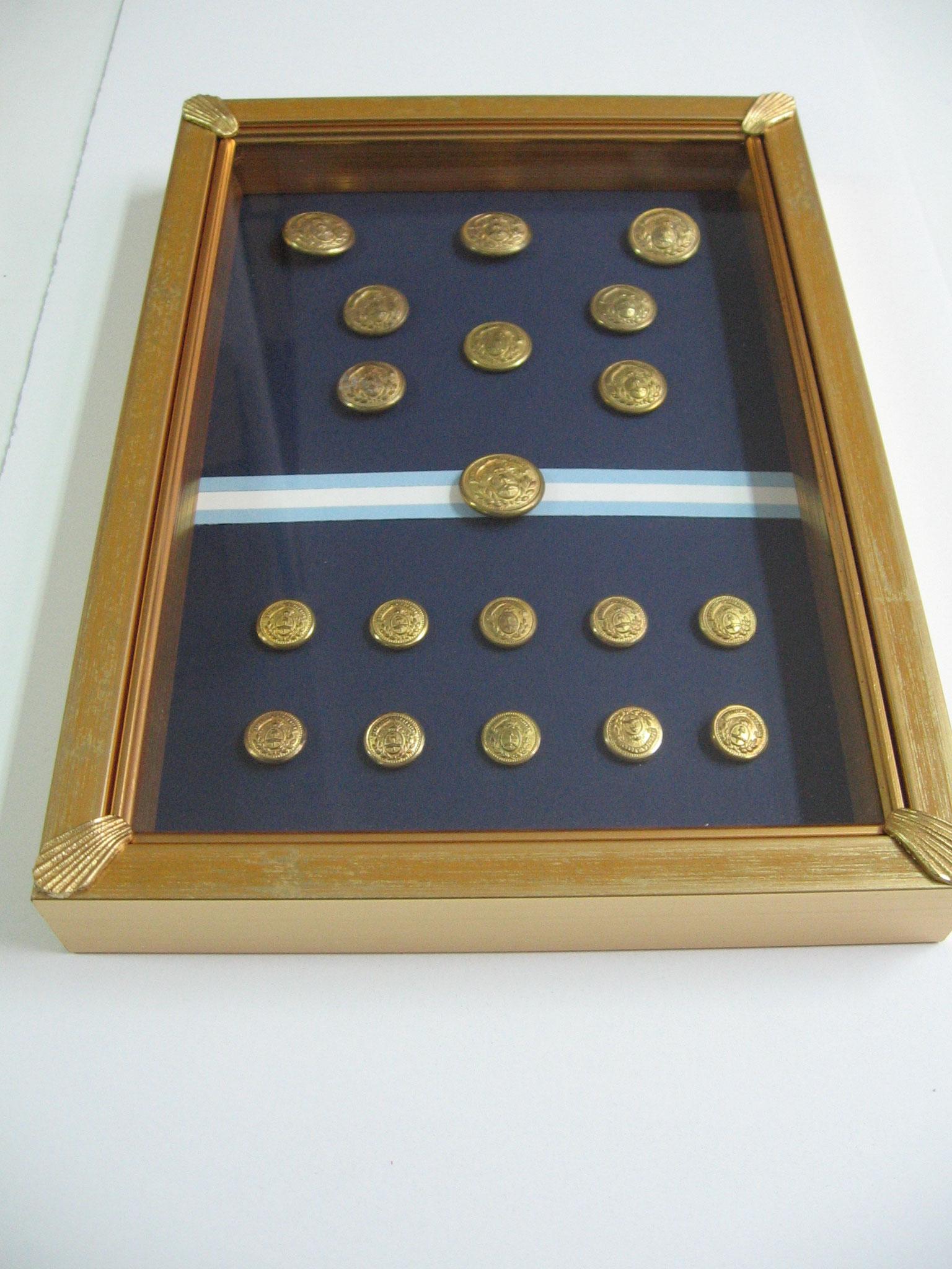 Collezione di bottoni dell'Esercito della Repubblica Argentina.
