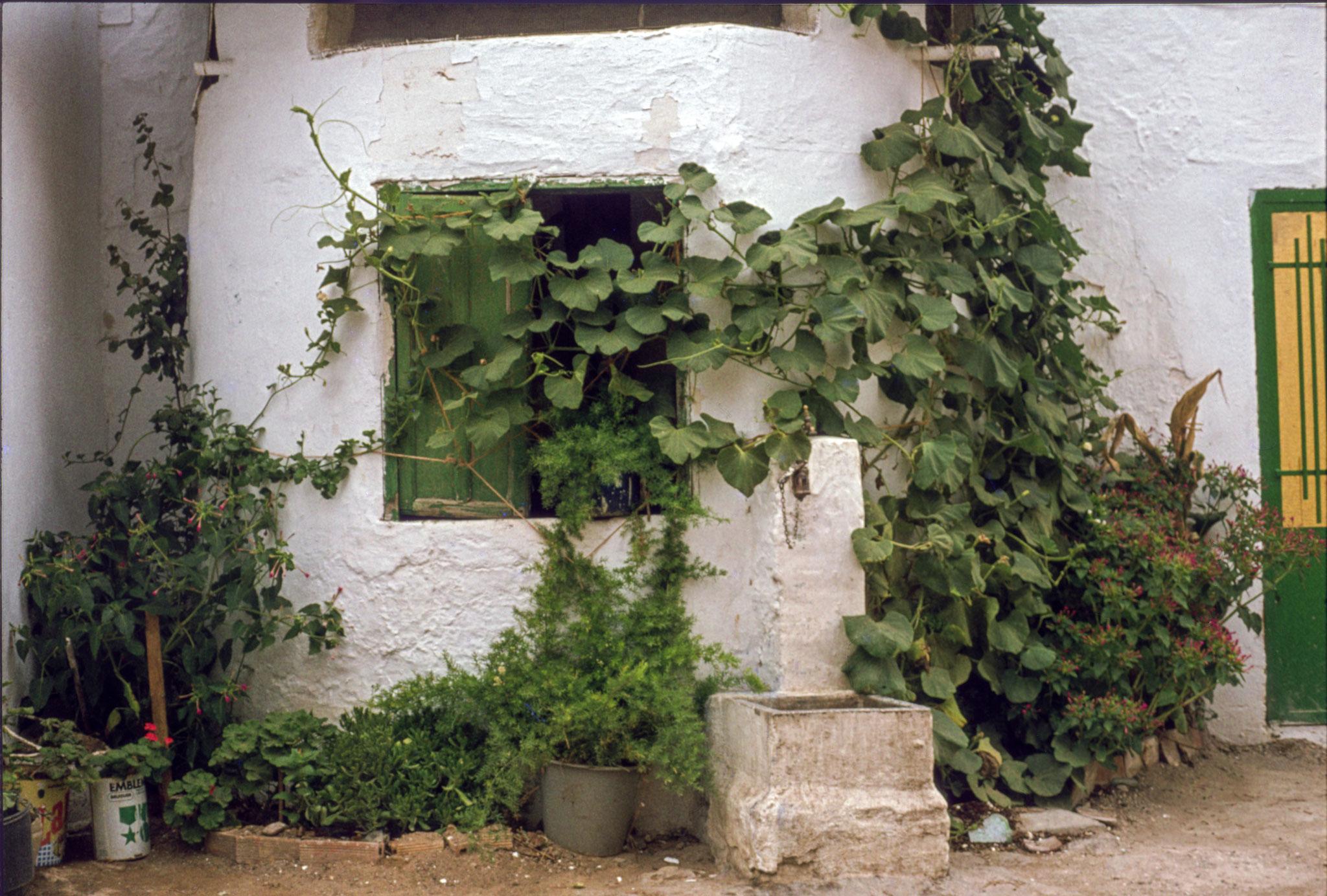 Algeciras, Spanien