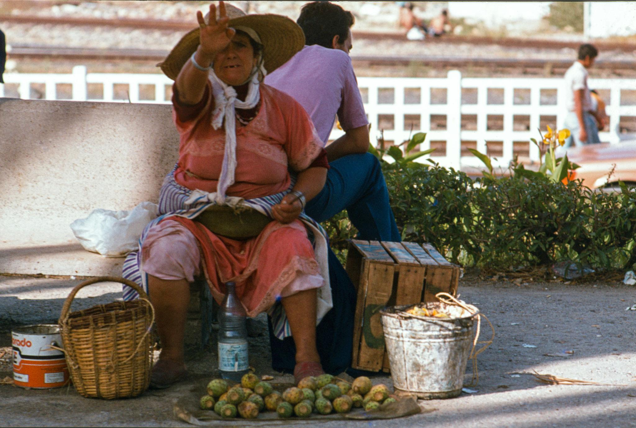 Tanger, Kaktusverkäuferin
