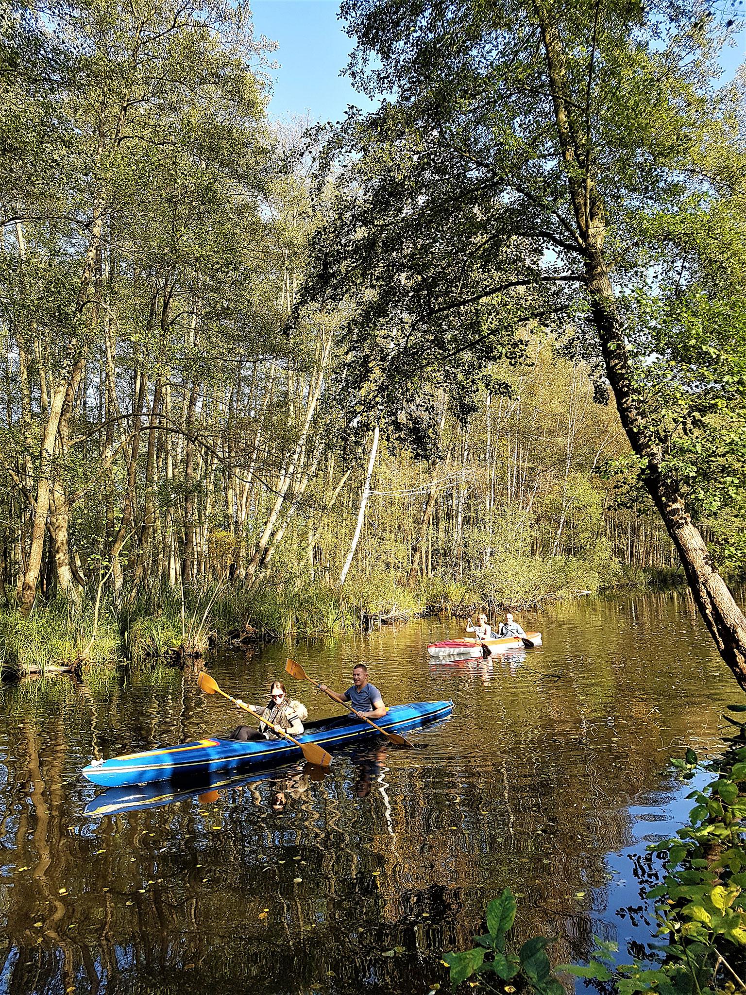 Paddeln in der Rheinsberger Seenlandschaft