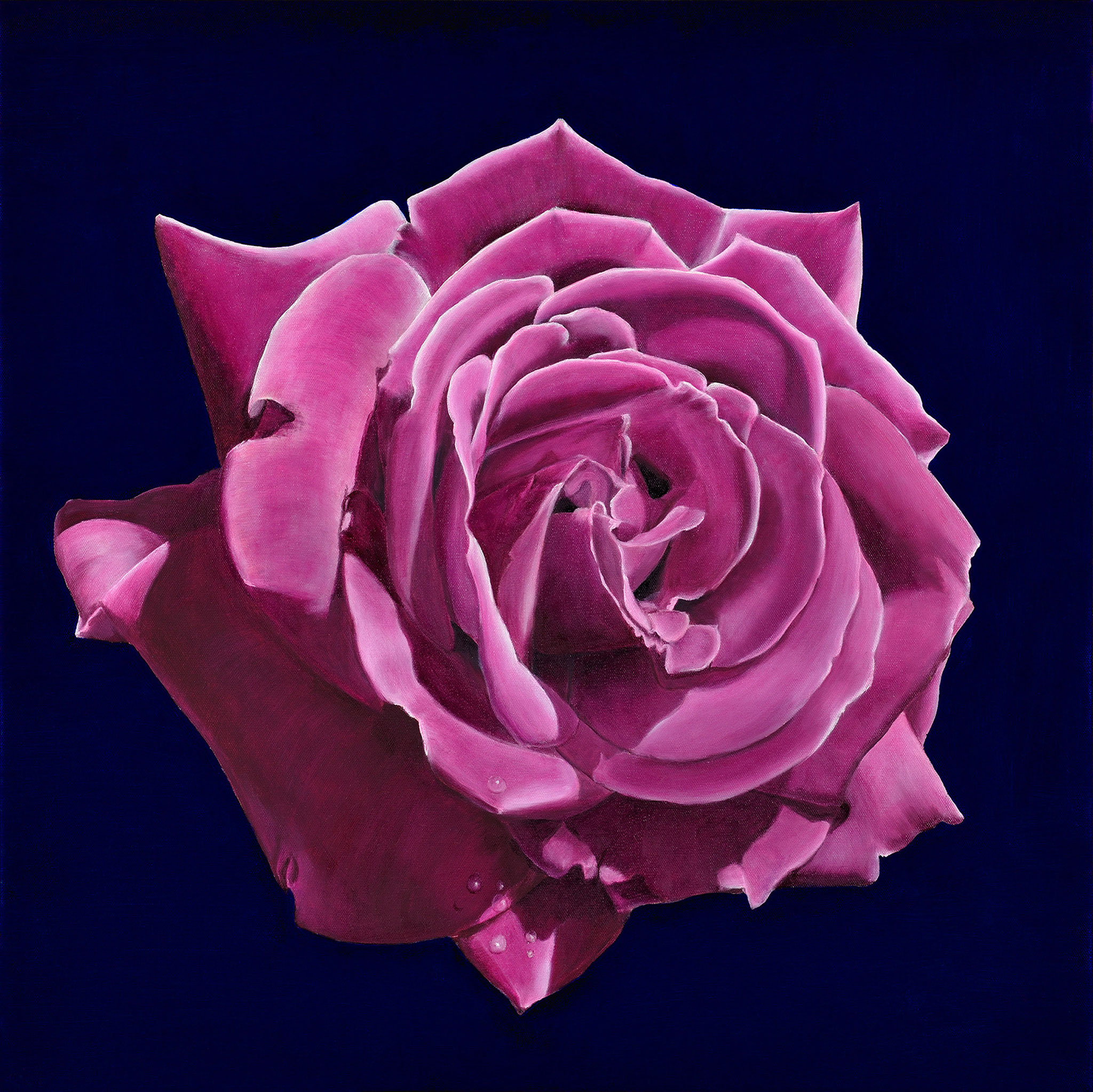 """""""Die Rose"""" - Öl auf Leinwand -"""
