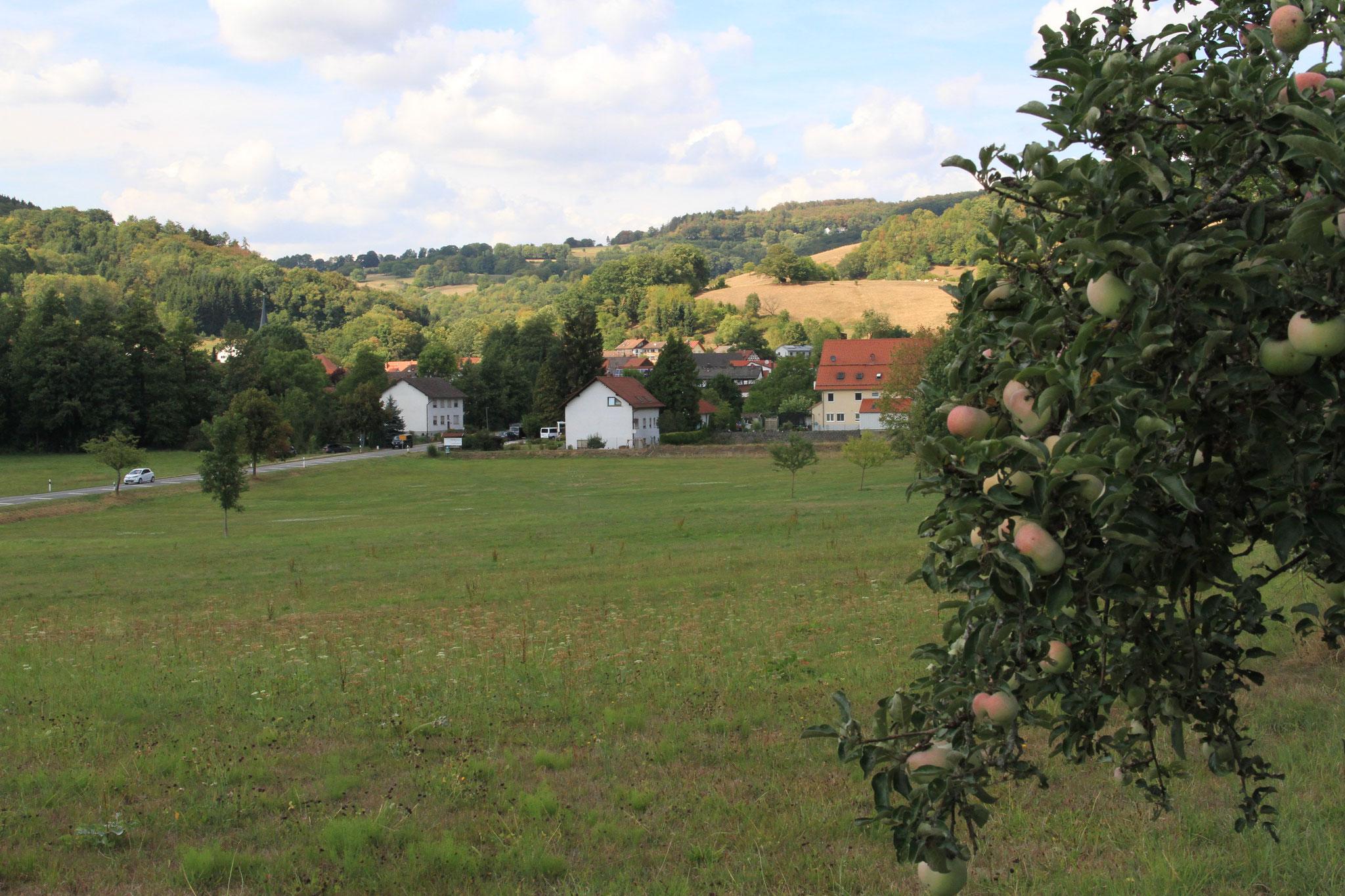 Wieder zu Hause in Schlierbach