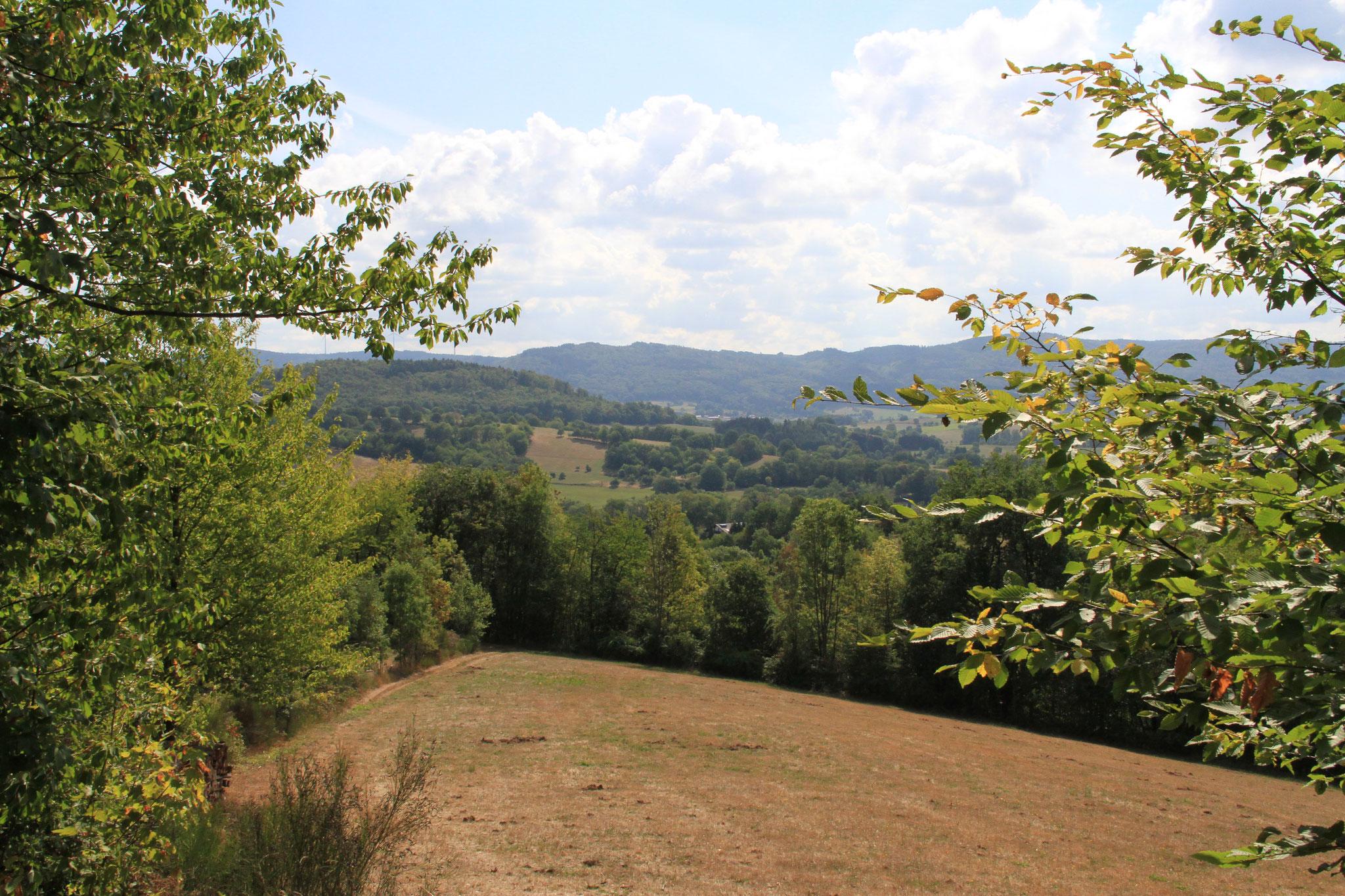 Blick ins Schlierbachtal