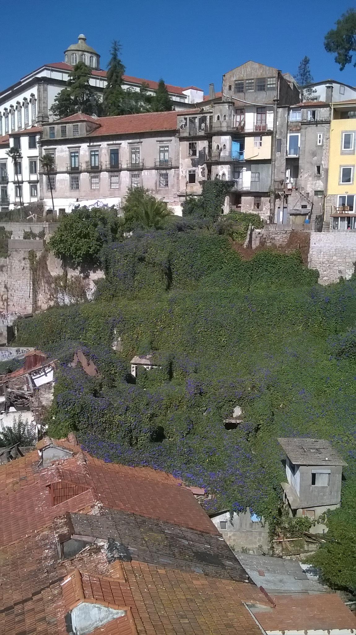 Hach, Porto <3 So eine wundervolle & inspirierende Stadt. Gerade die Geschichte& die Free Walking Tours waren soo toll. J.K. Rowling hat sich hier ja auch teilweise inspirieren lassen. Und ich weine um all die Fotos, die ich dort nicht gemacht habe.