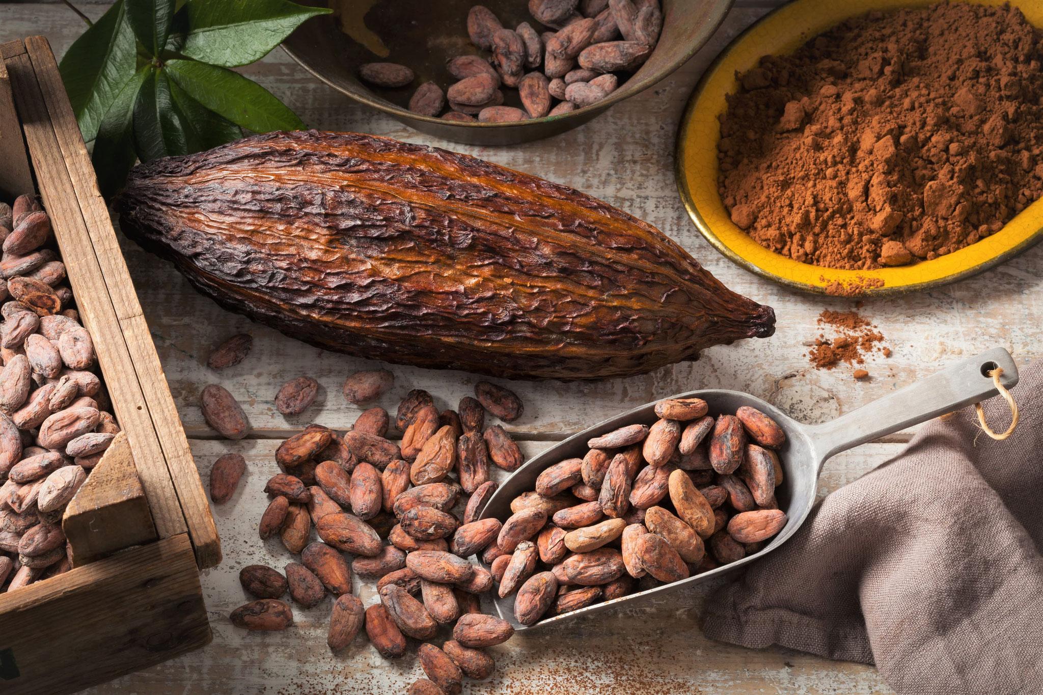 Cabosse de cacaoyer et fèves de cacao grillées