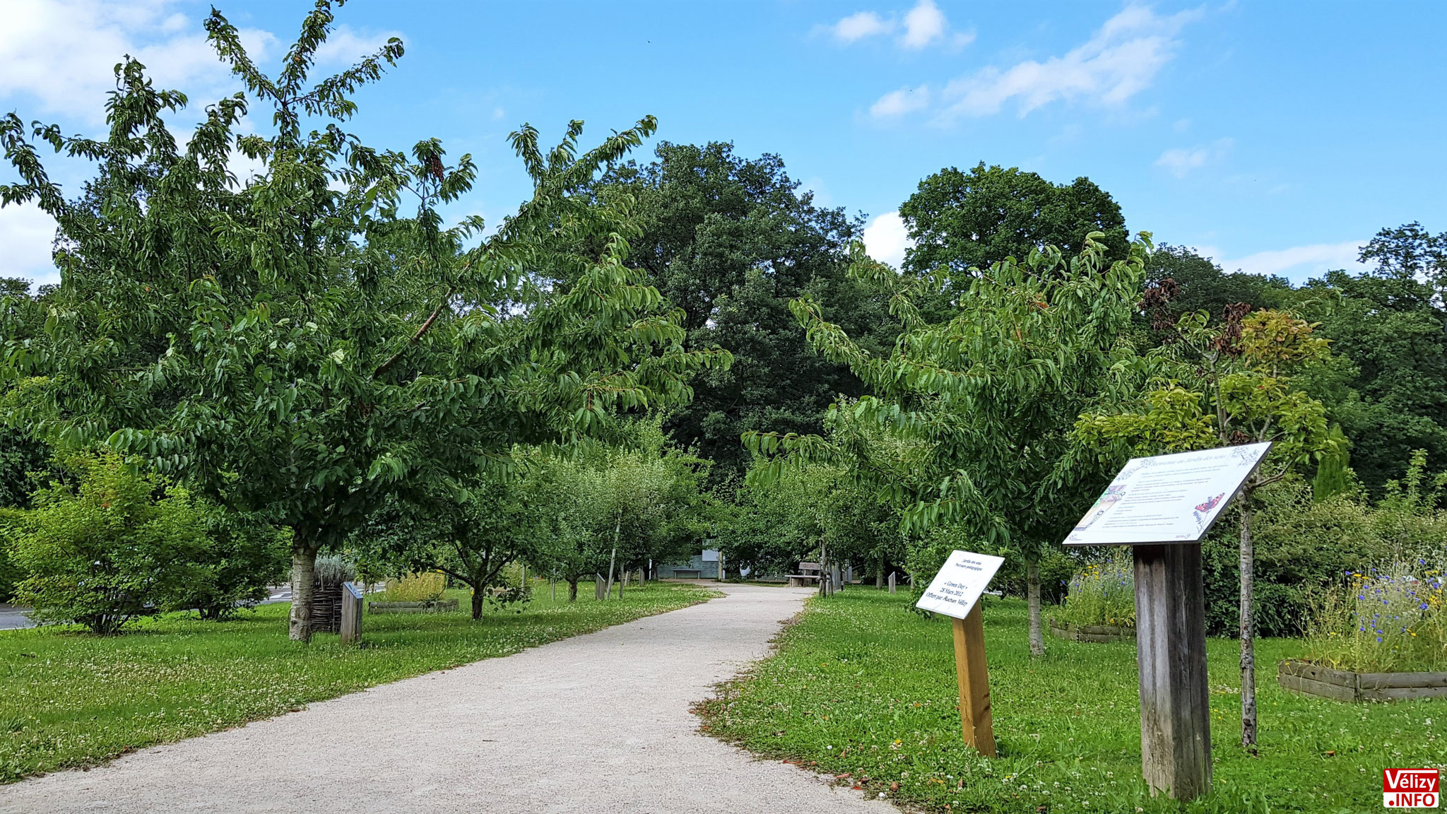Jardin des Sens à Vélizy-Villacoublay.