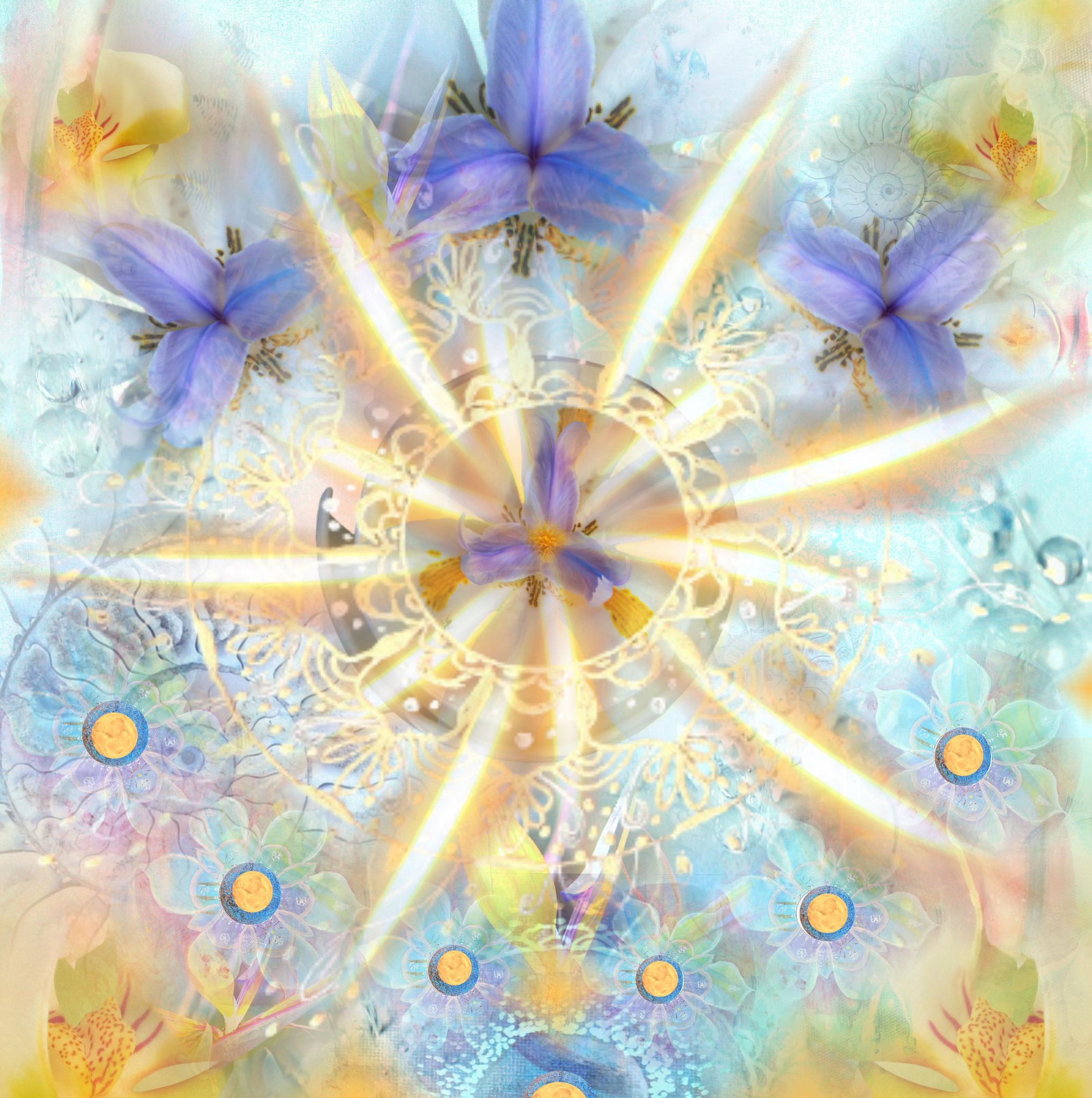 Duft der Licht-Blüte