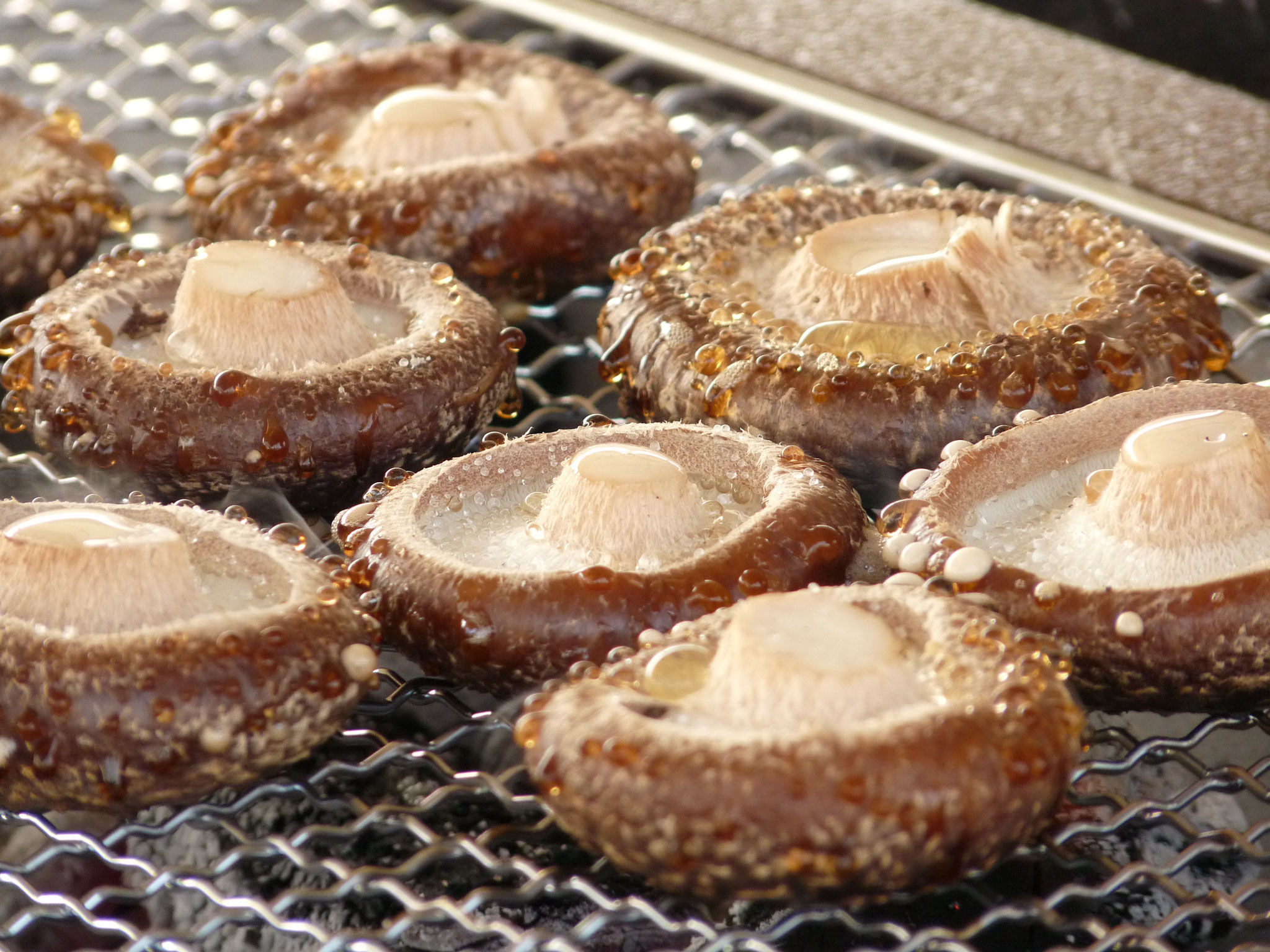 採りたてを炭火で焼けば、最高の味わい