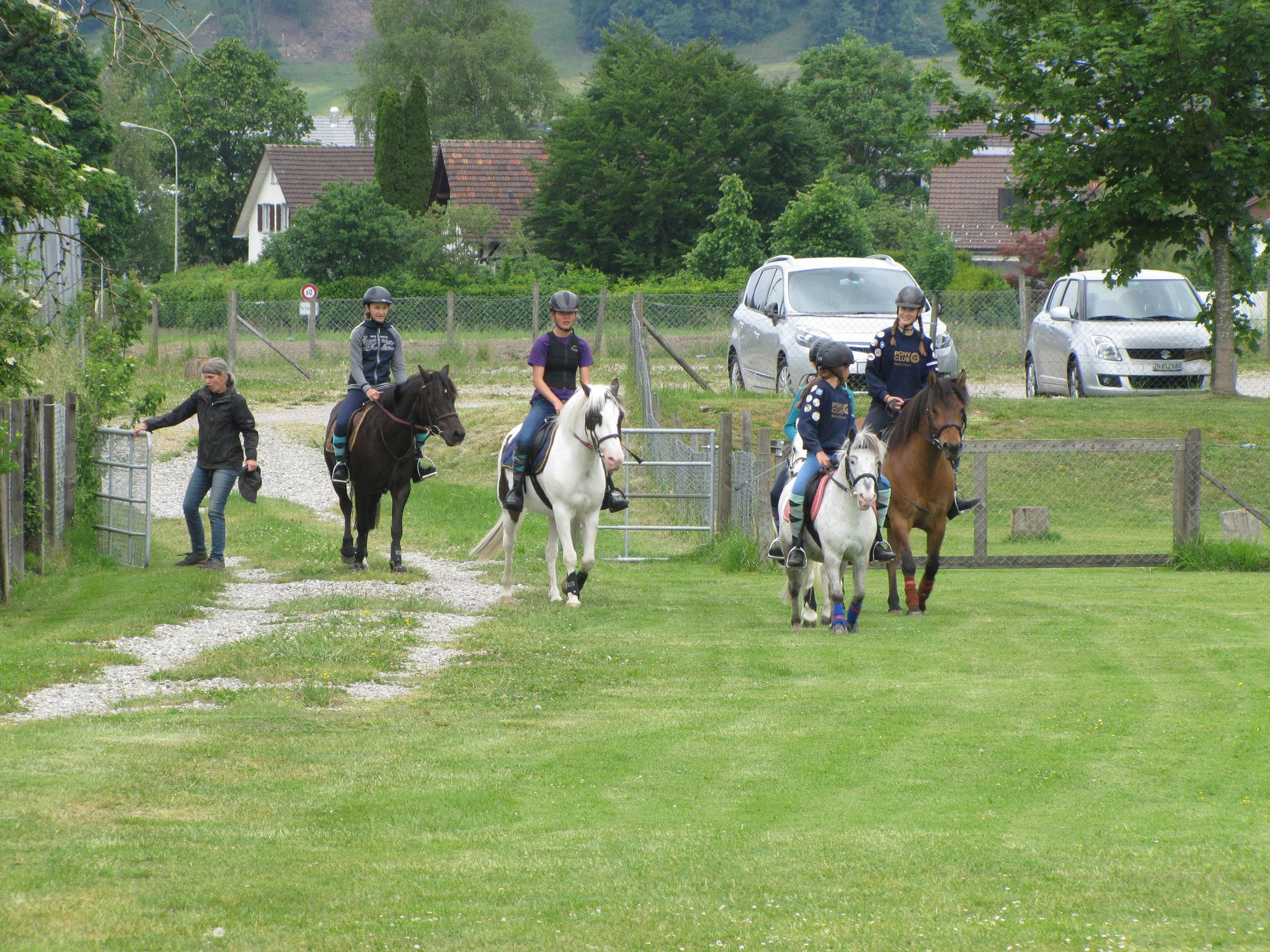 09.06.2019 Mounted Games-Training Wila