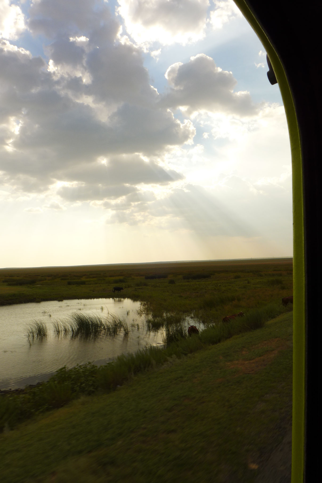and even a river in the steppe.